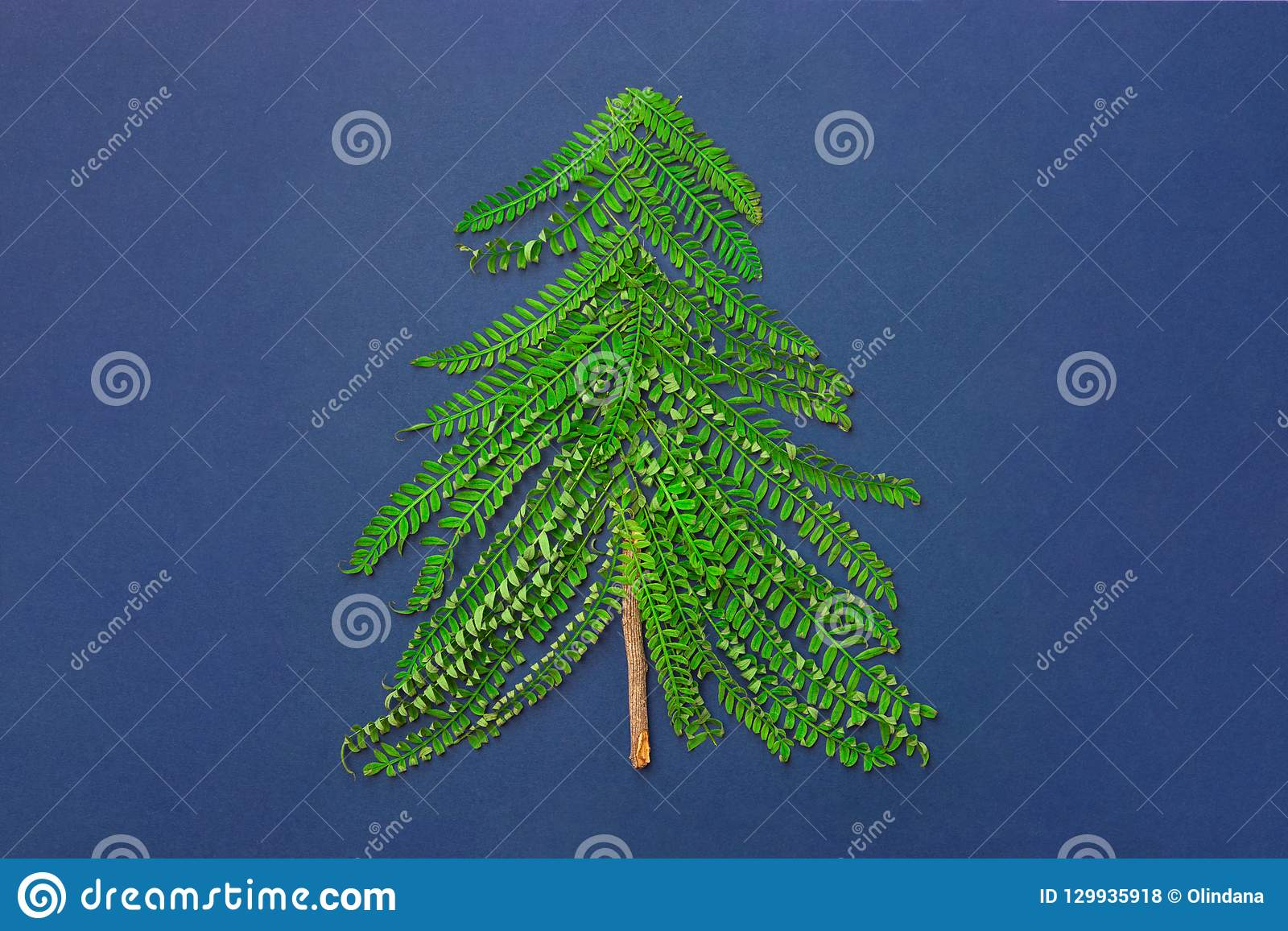 Christmas Tree Made From Green Fern Twigs Branches Wood Knot On Dark