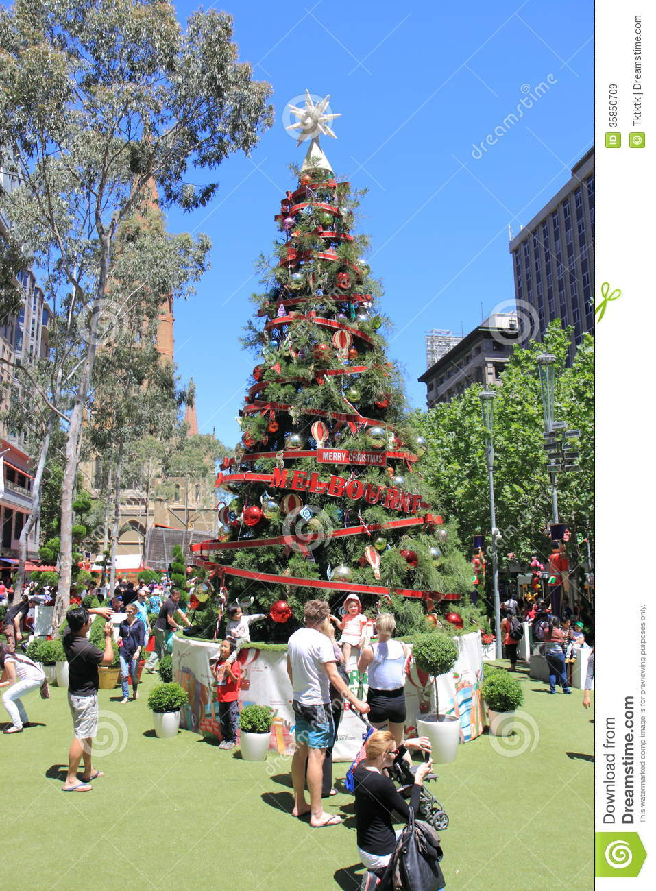 Date trees in Melbourne
