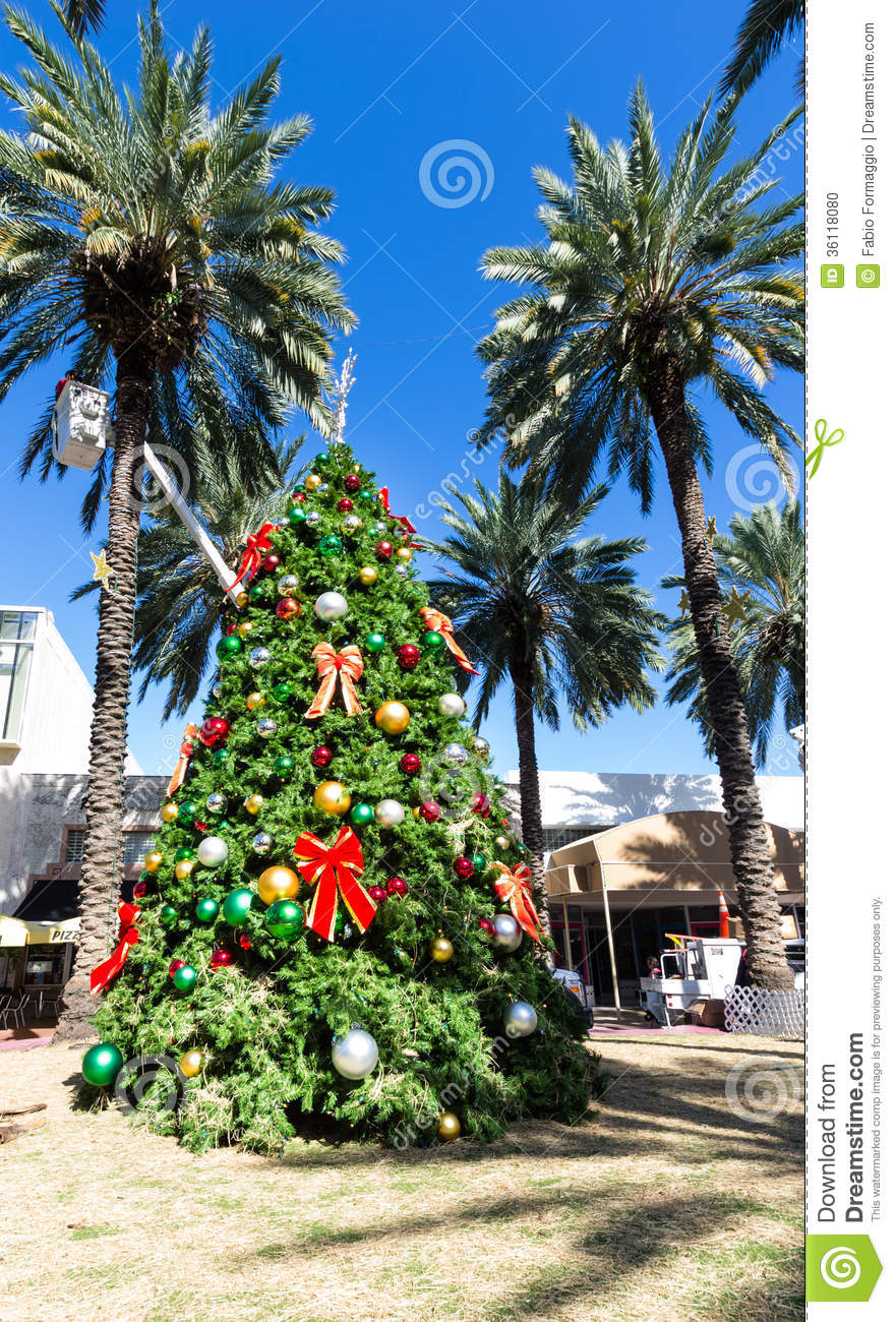 Christmas tree in Miami stock photo. Image of christmas - 36118080