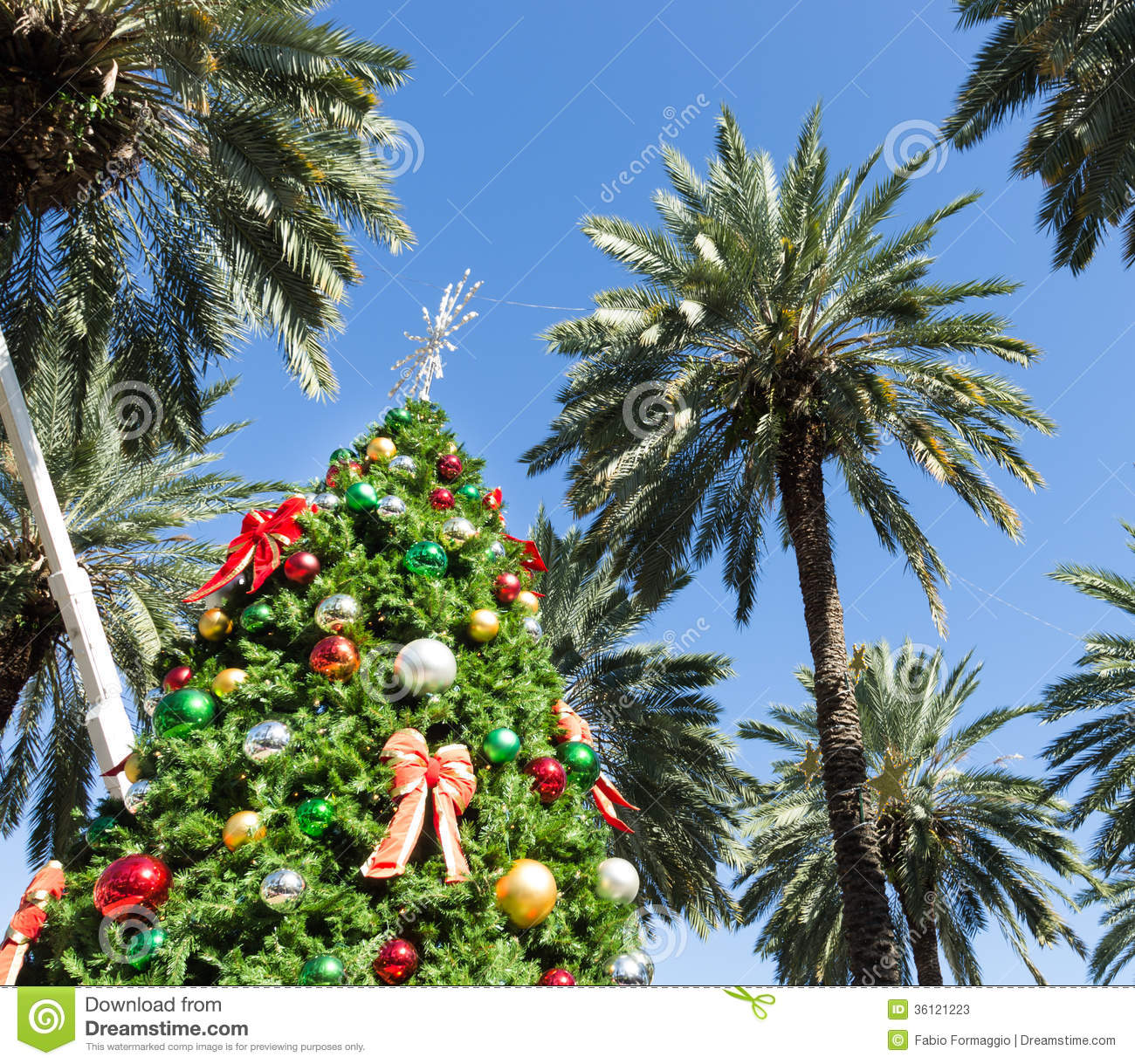 Christmas tree in Miami stock image. Image of outdoors - 36121223