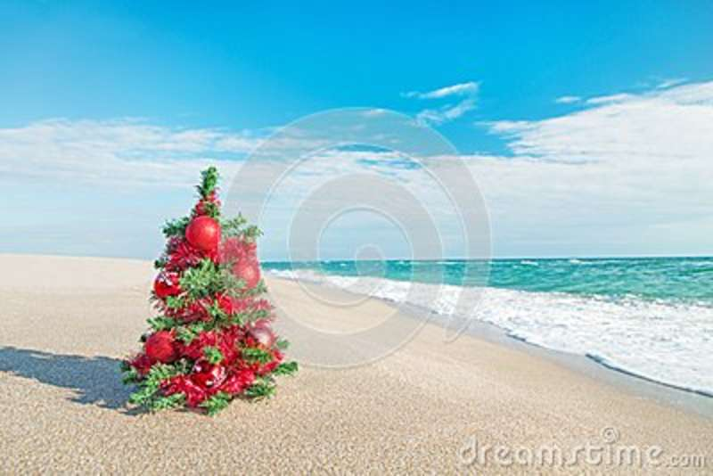 christmas tree with red decorations on the sea beach christmas vacation concept