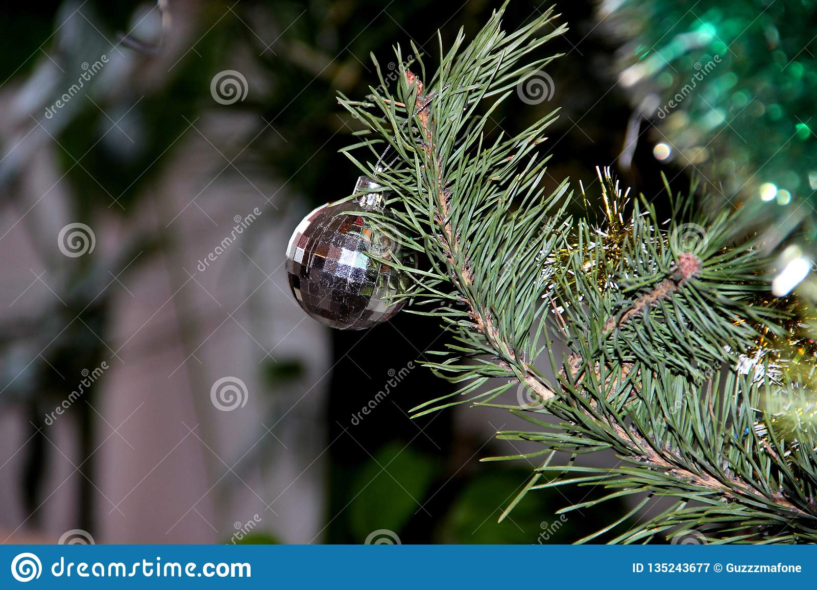 Christmas Tree Spruce Or Other Conifers Custom Made For The New Year Originally Originated As A And Took Over Most Of
