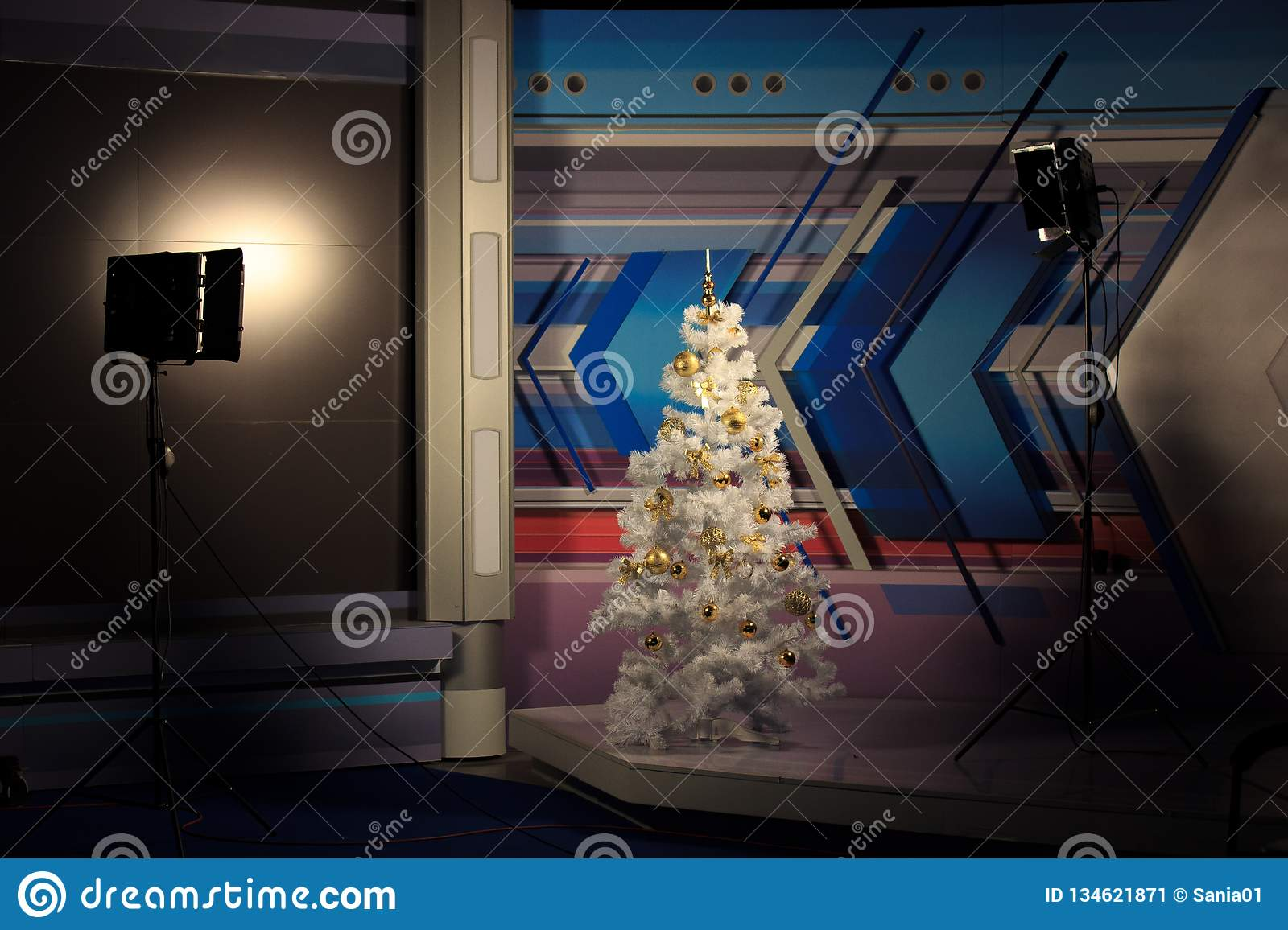 Christmas Tree In The Studio Video Lighting On Both Sides