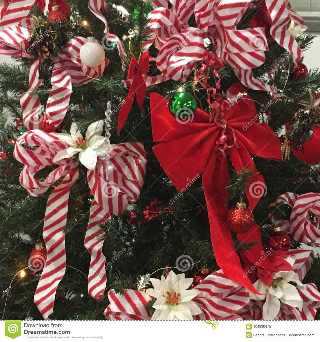 Christmas Tree Bows Red.Christmas Trees With Bows Stock Image Image Of White