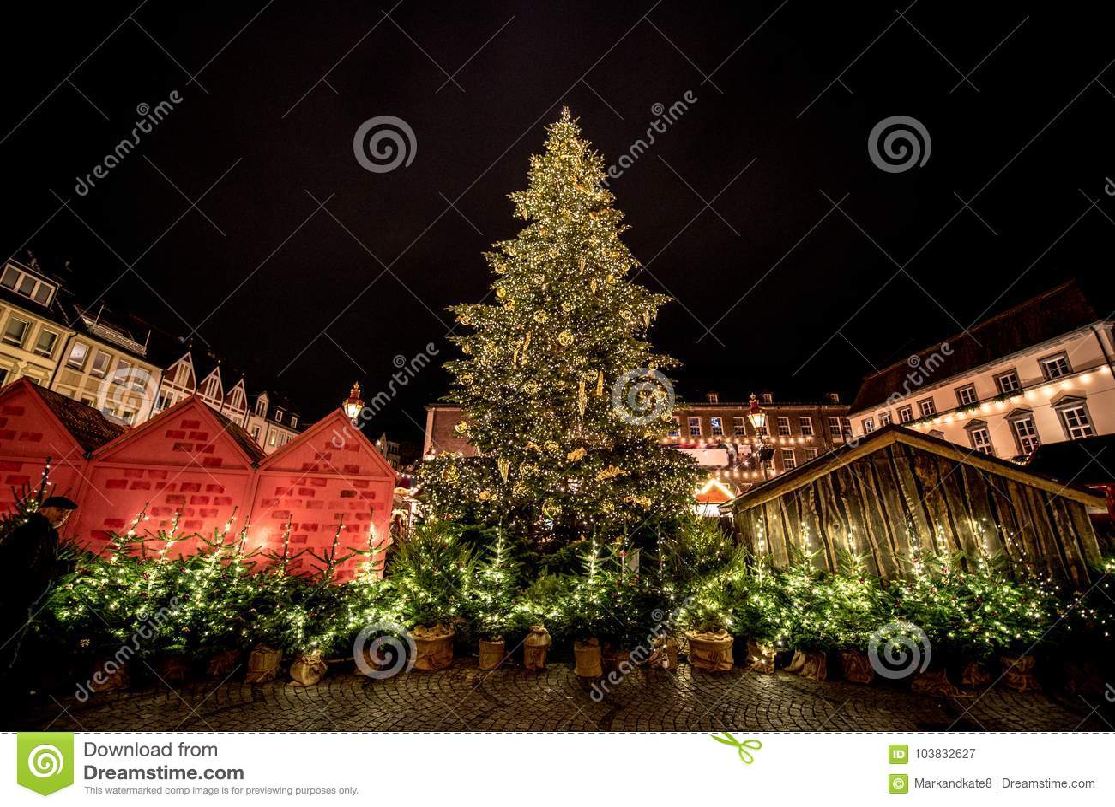 German Christmas Tree.Christmas Trees At German Christmas Markets Stock Image