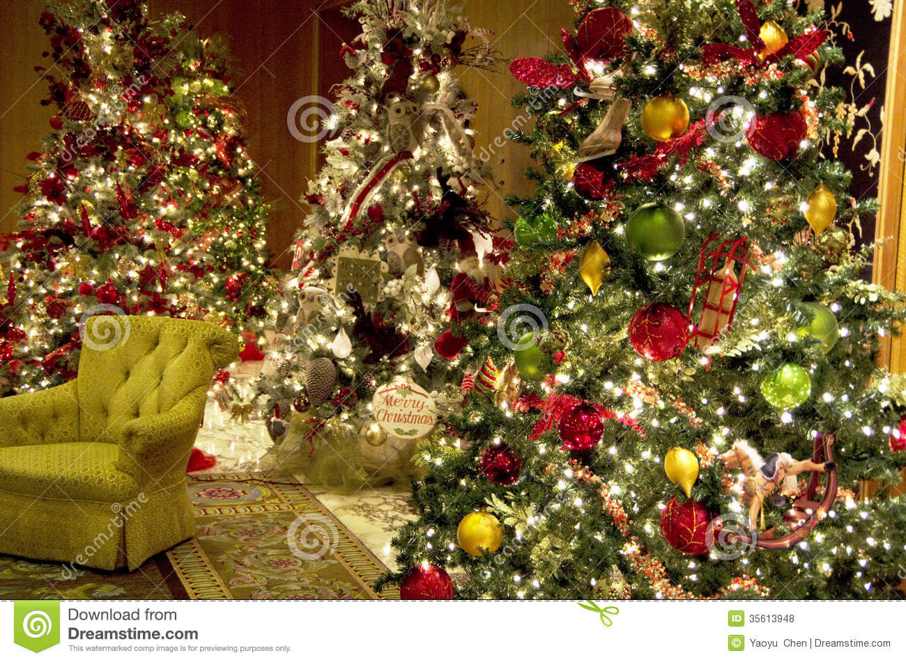 Outdoor Christmas Trees With Lights