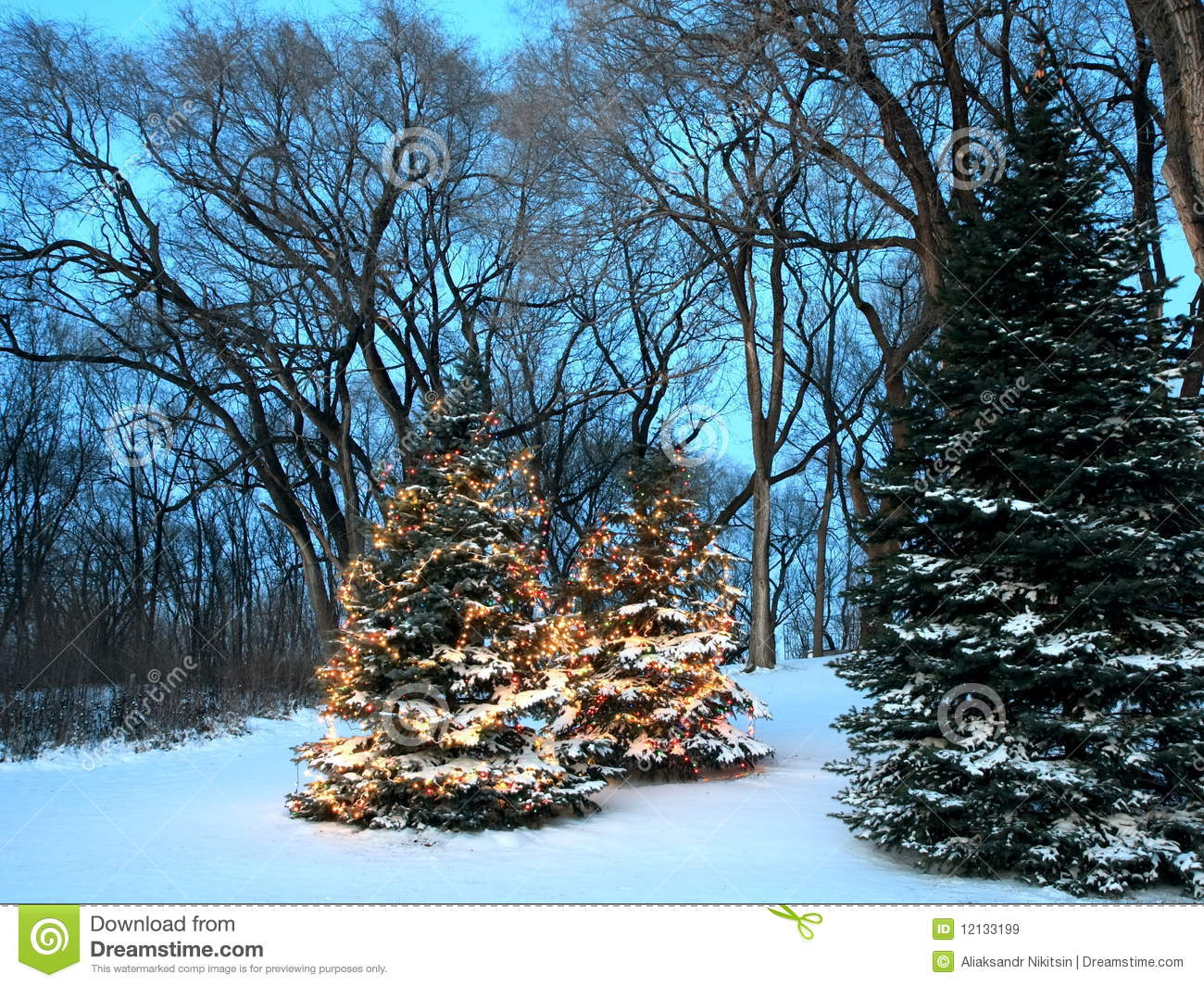 White Decorated Christmas Trees
