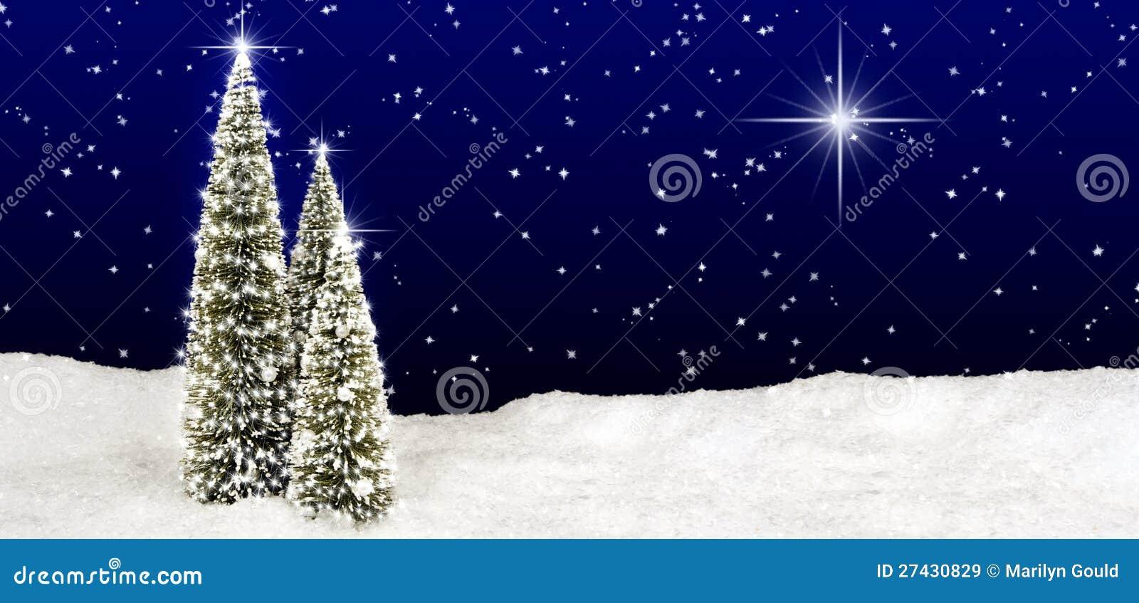 Christmas Trees Star Sky