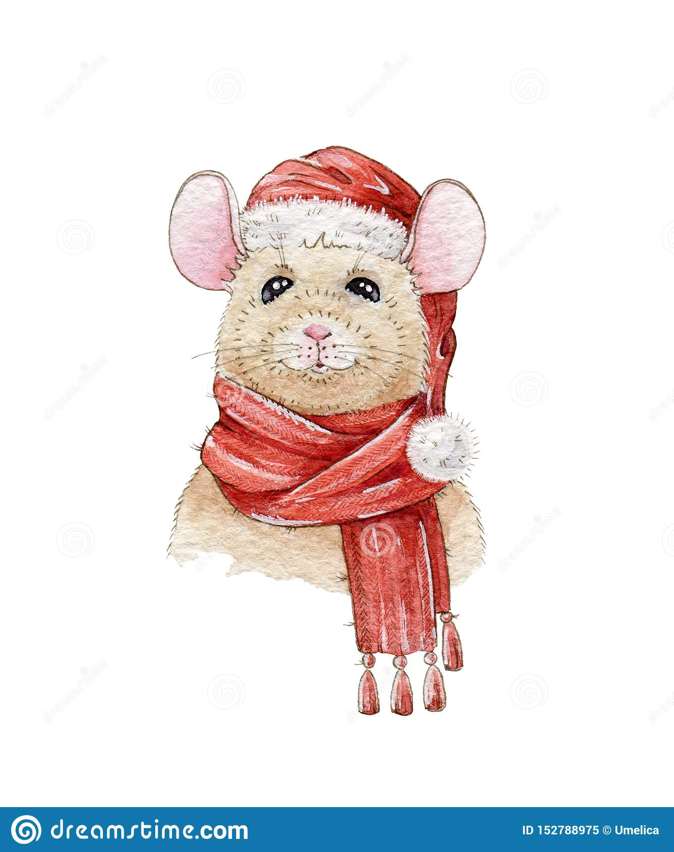 Christmas watercolor hand painted illustration of a nice mouse in a red hat and warm scarf. A chinese new year symbol of 2020.