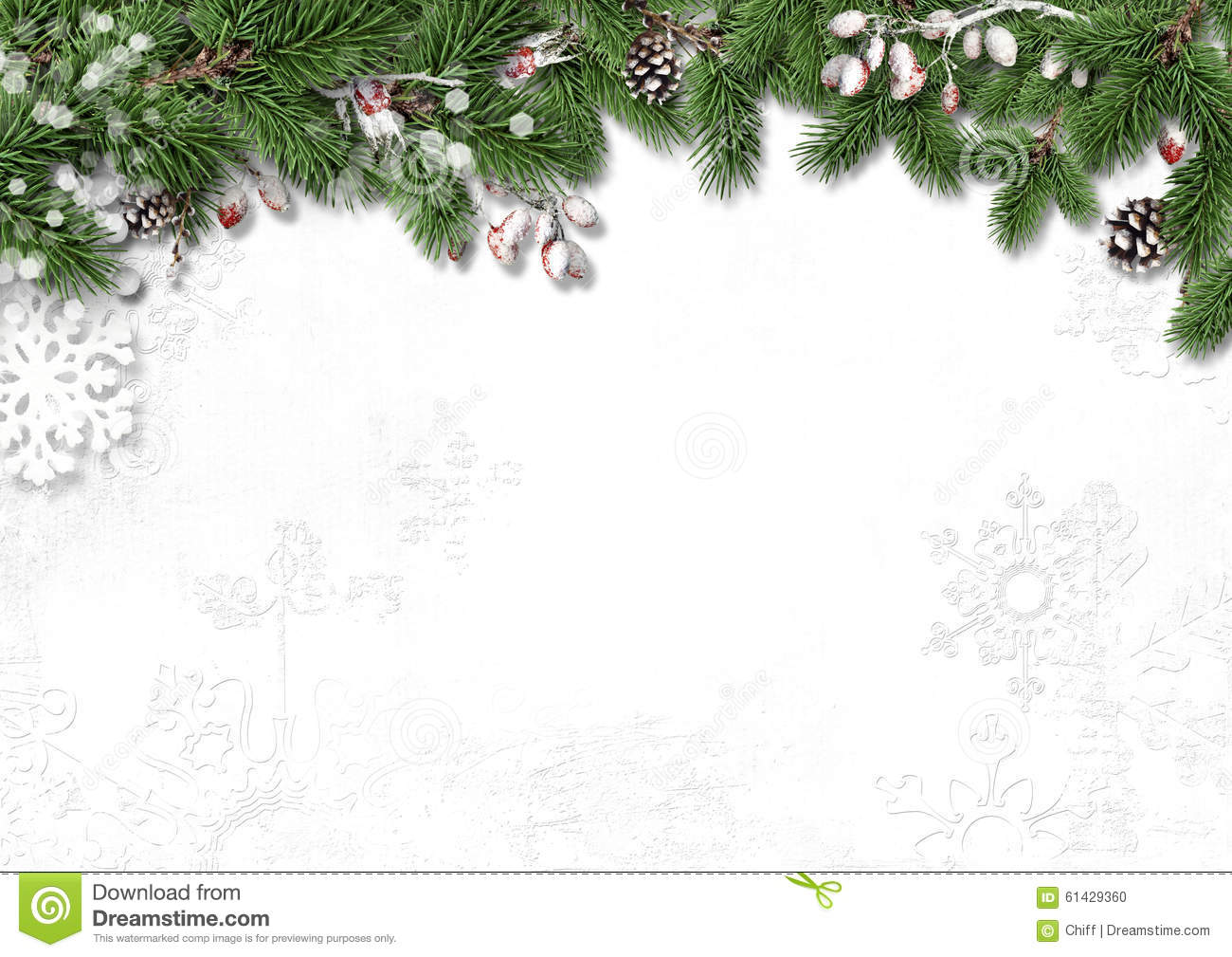 Christmas white background with decorations, holly and branches