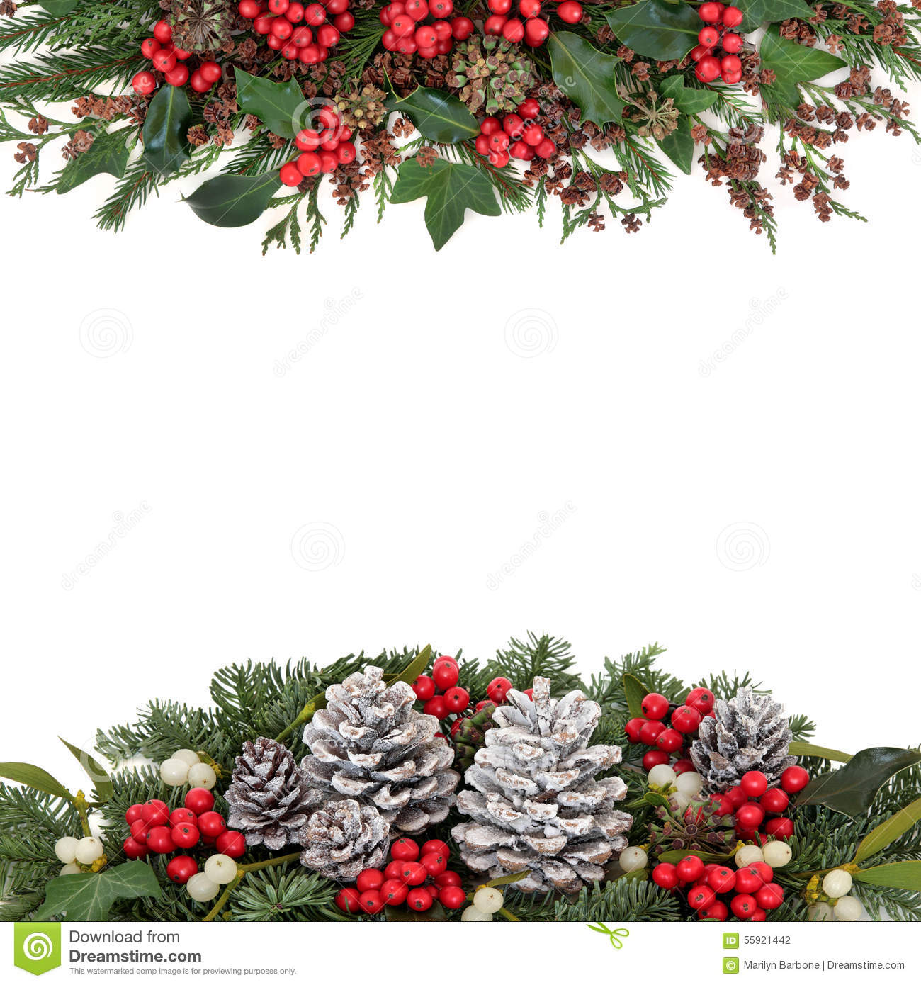 Christmas and winter floral border stock photo image of