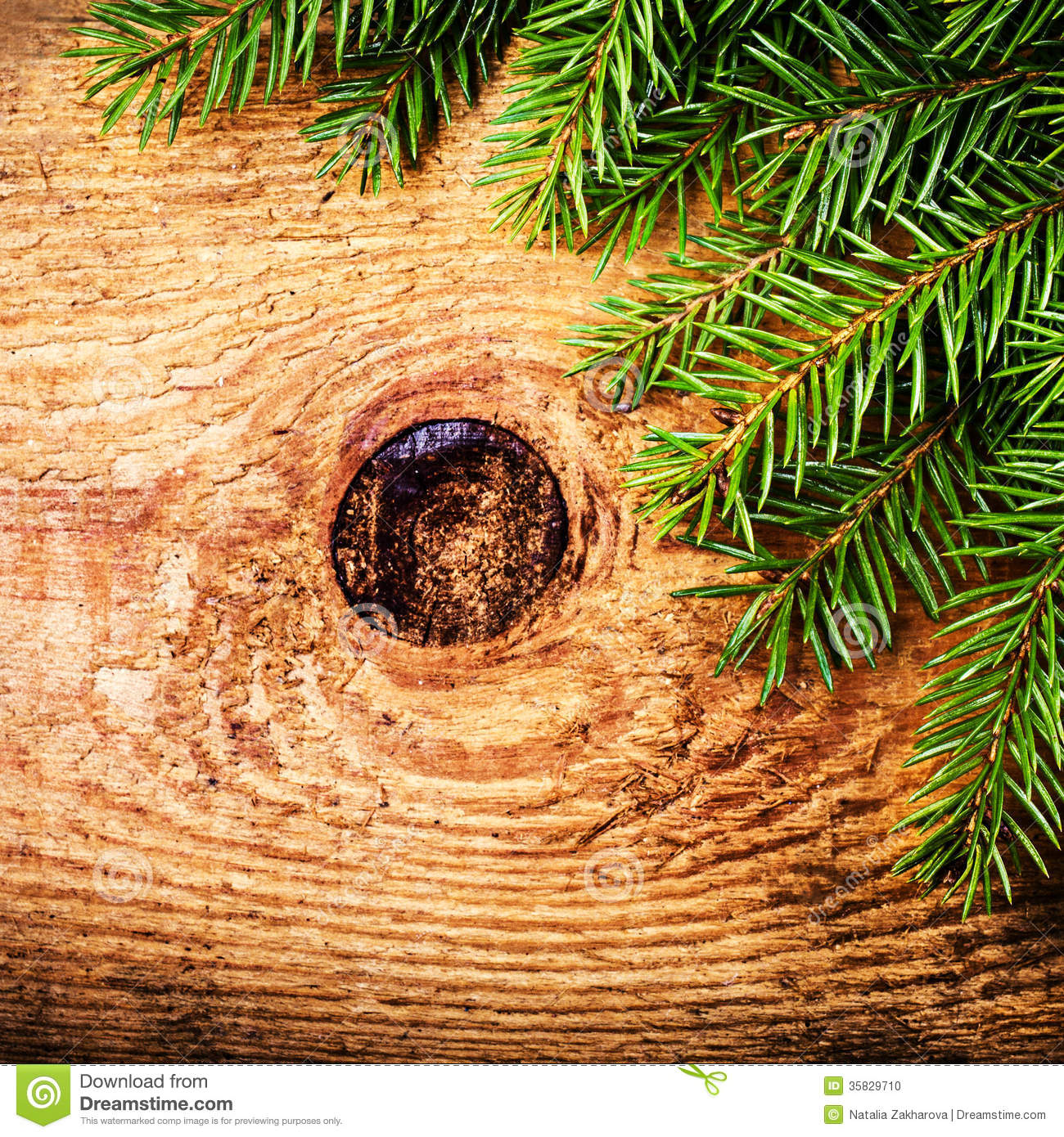 Christmas Winter Holiday Decoration On Wood Background With Co