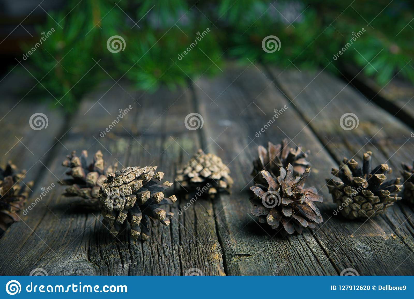 Christmas wooden background with ir tree and pinecones