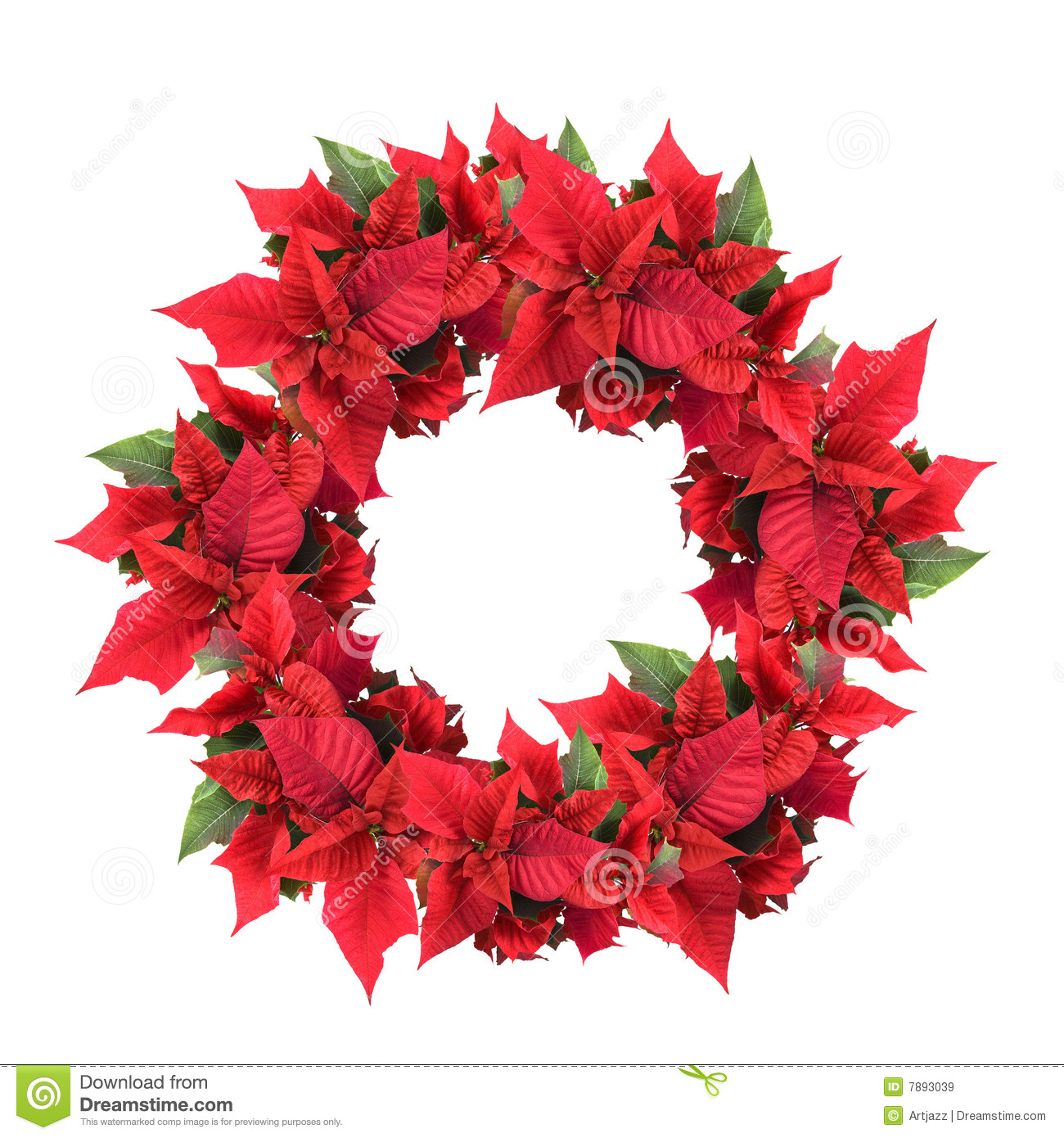 christmas wreath from poinsettia royalty free stock images image