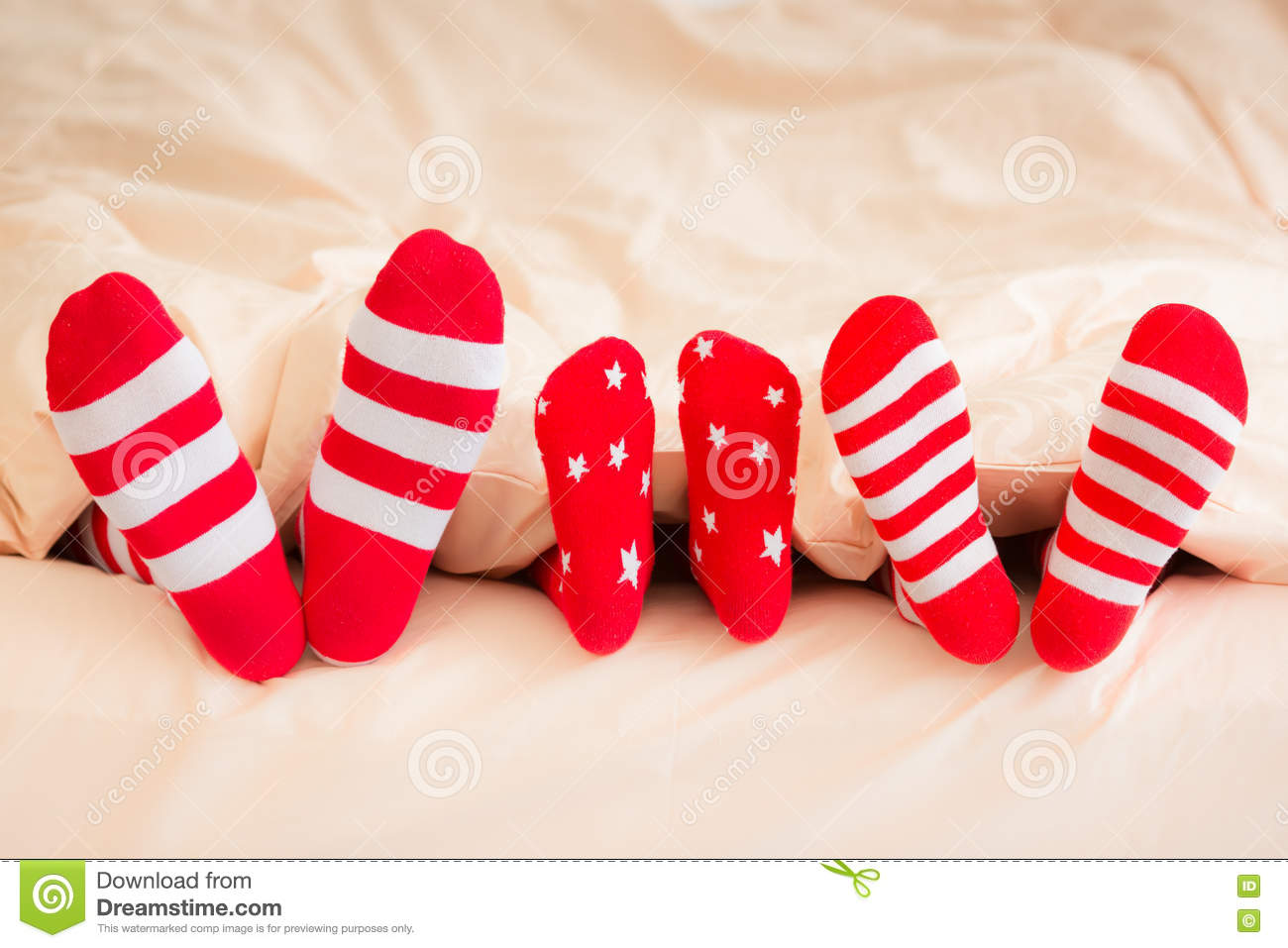 xmas stock photos royalty free pictures