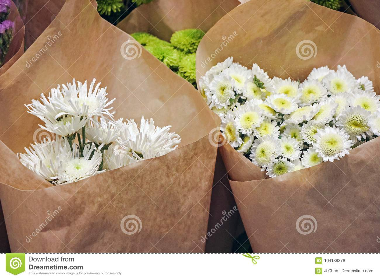 Chrysanthemum Flowers Wrapped In Paper Stock Photo Image Of White