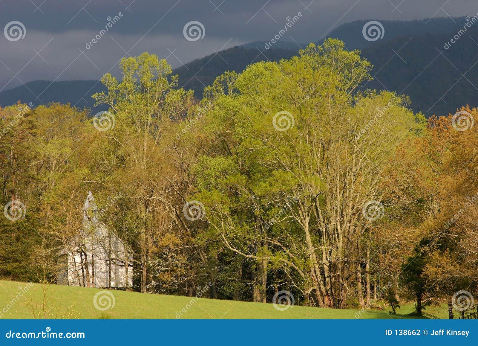 Church methodist drzewa
