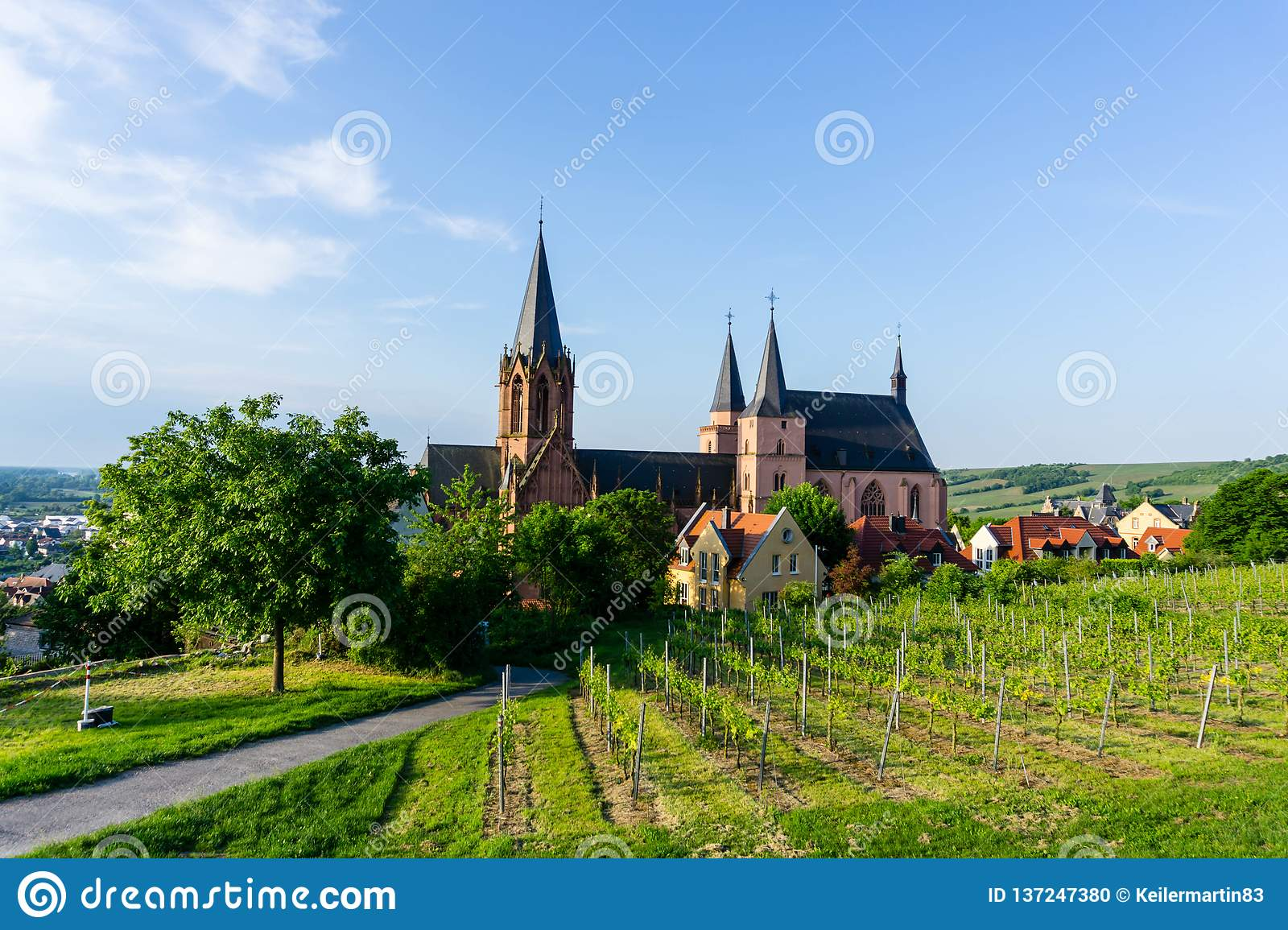 Church in the vineyards of Oppenheim, Germany