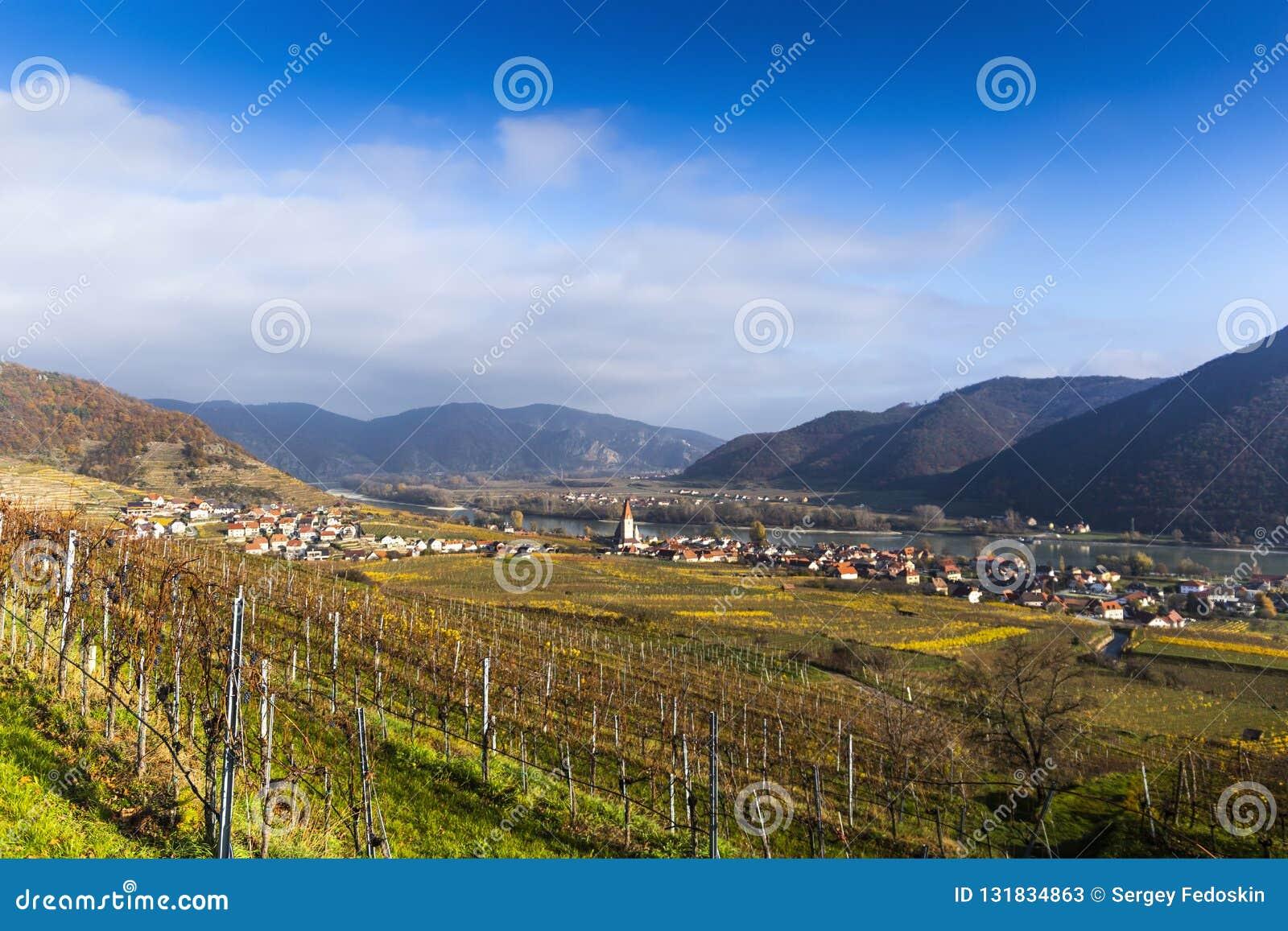 Weissenkirchen. Wachau valley. Lower Austria. Autumn colored leaves and vineyards.