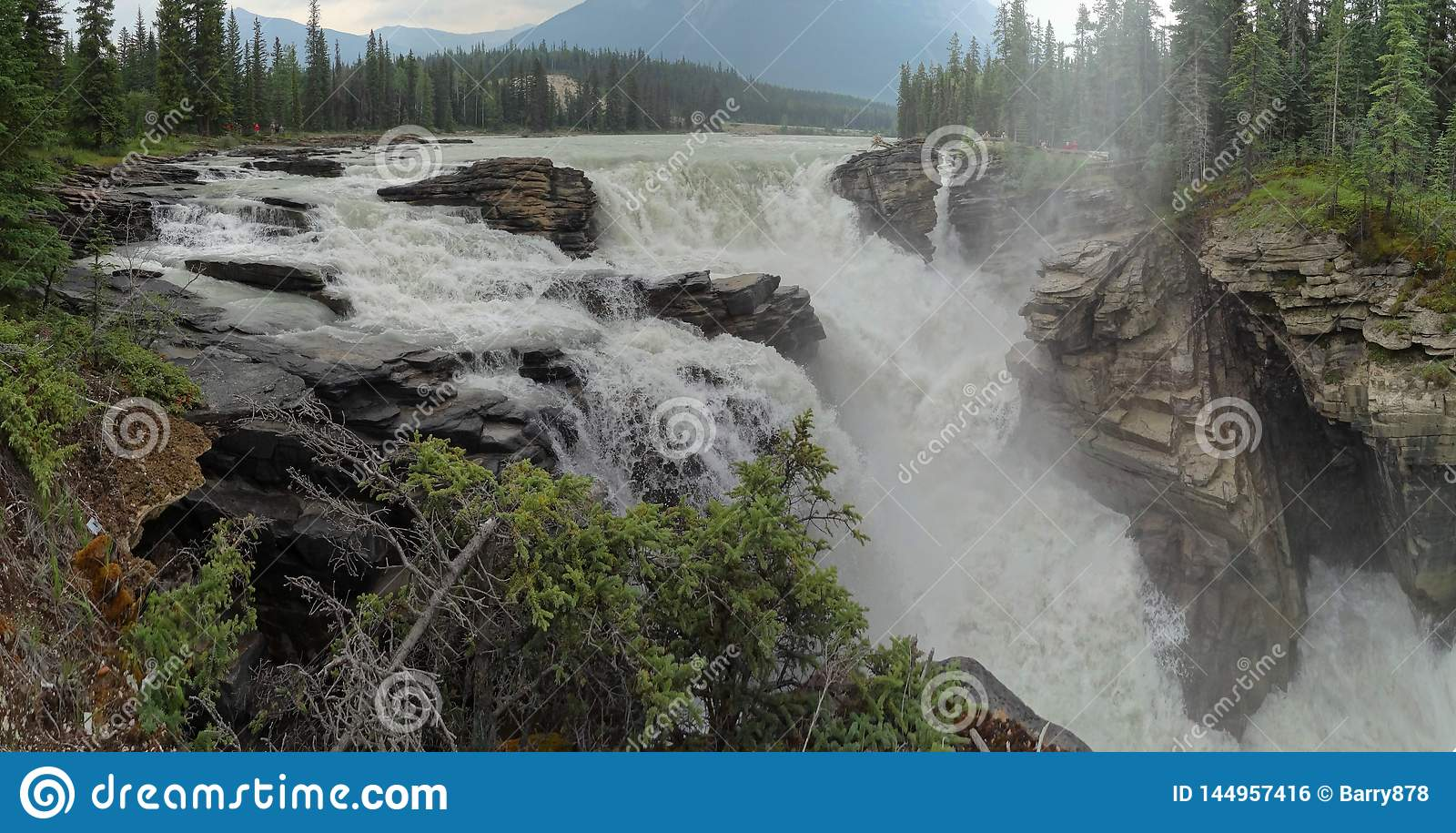 The churning waters of Athabasca Falls