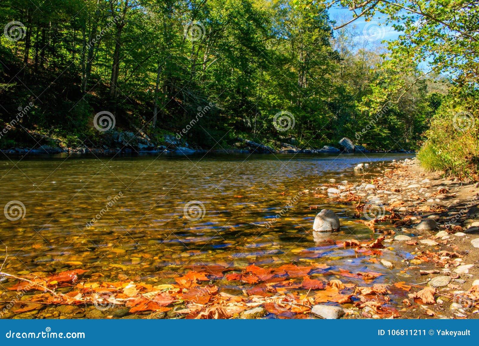 Chute tôt sur la rivière de Farmington