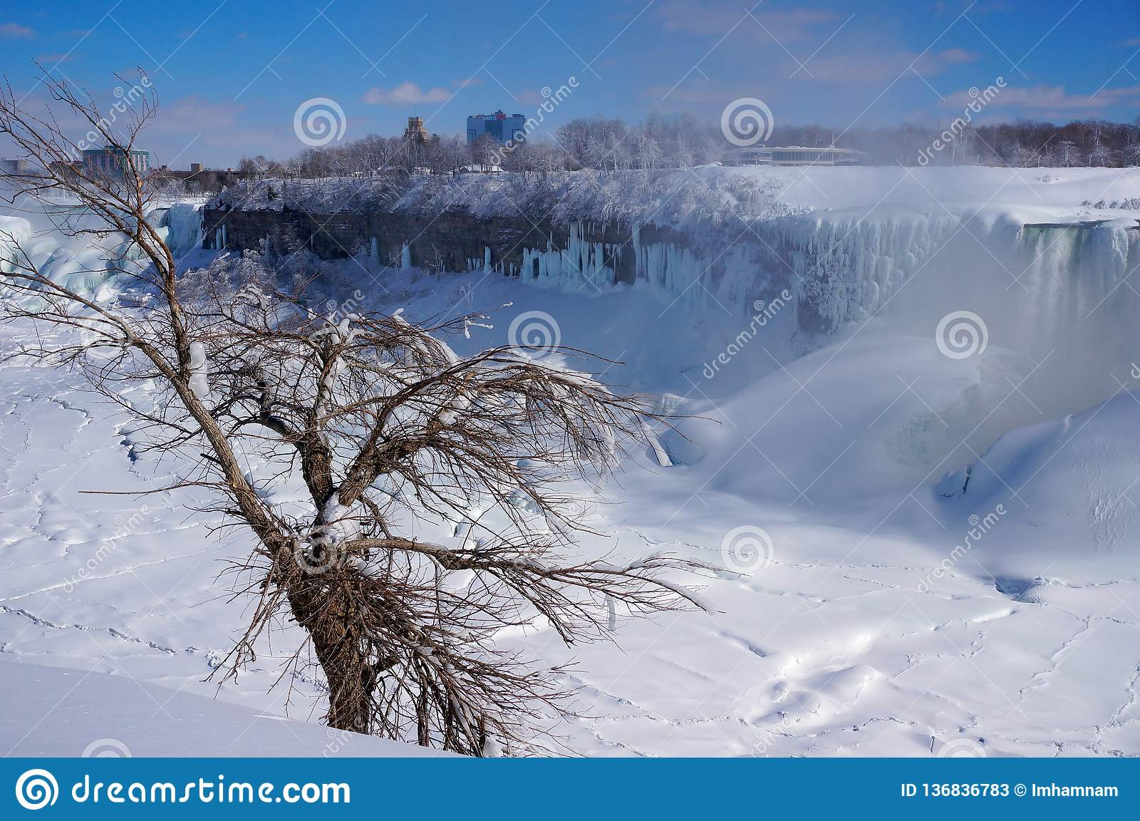 Chutes du Niagara blanches et arbres congelés en hiver