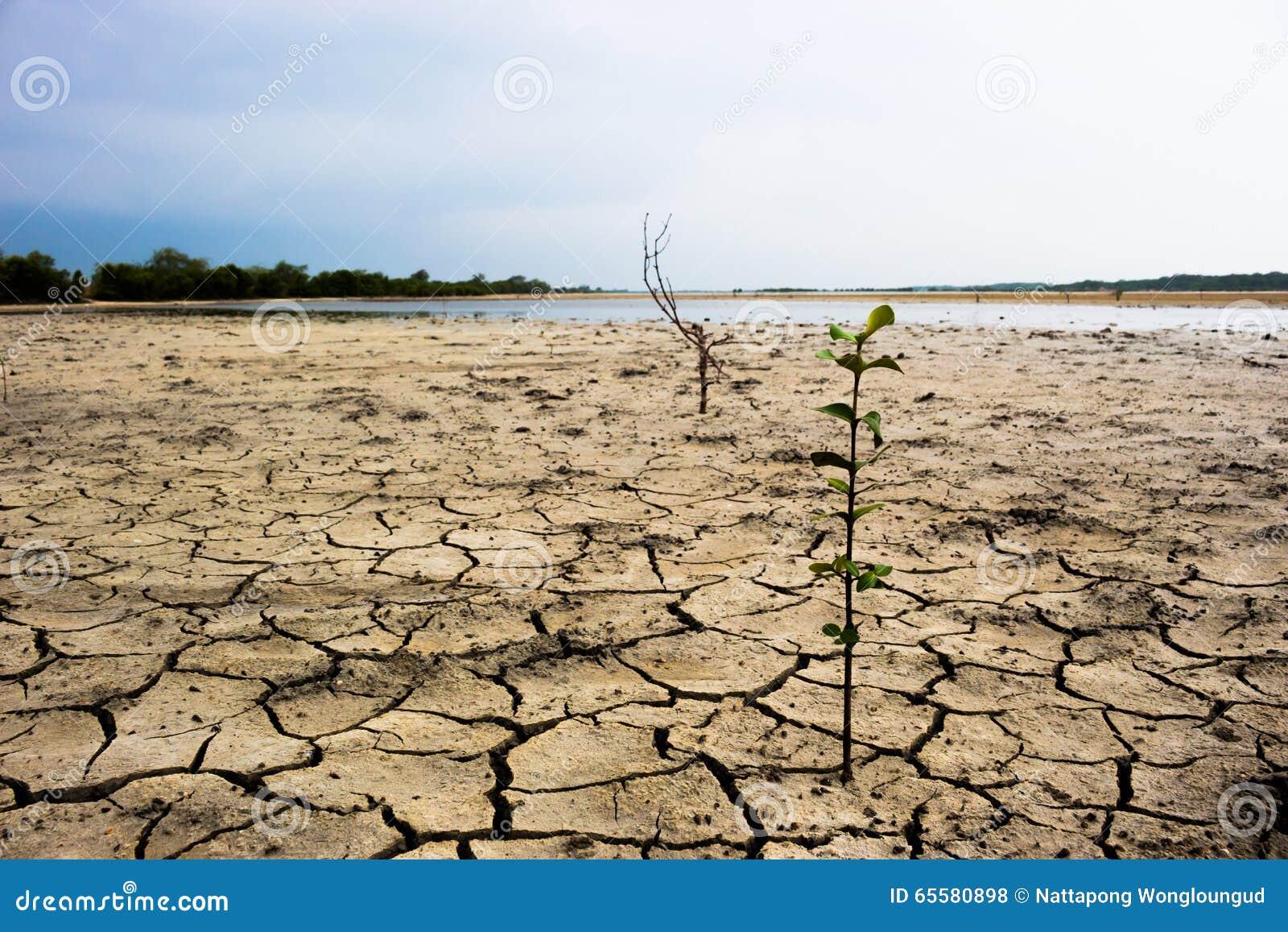 Chuva de espera à terra