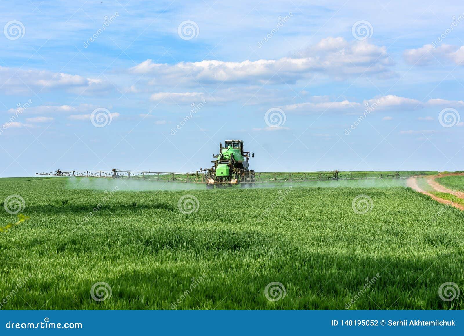 Ciągnik nawozi pszenicznych krótkopędy