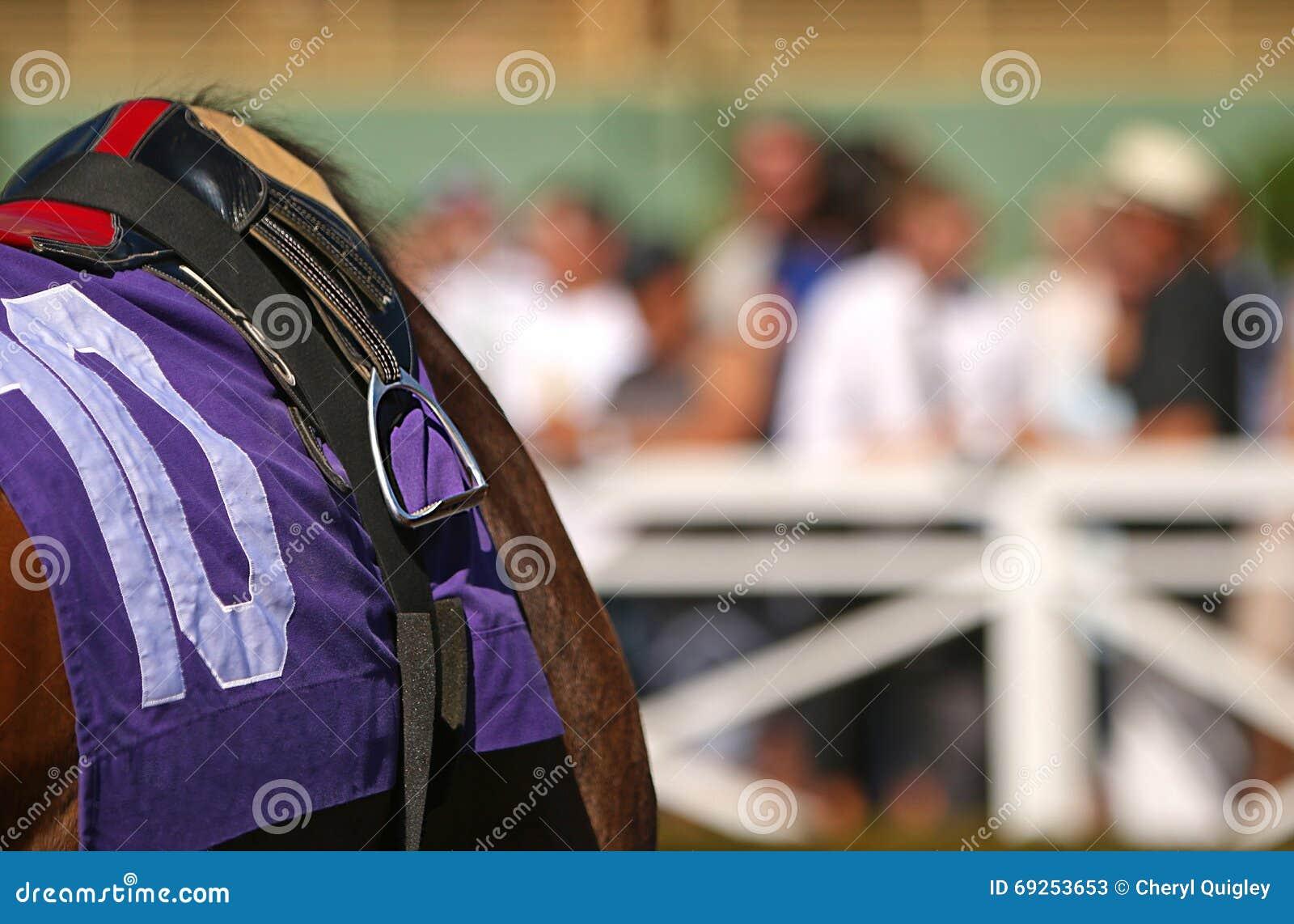 Ciérrese encima de caballo de carreras excelente con la tachuela