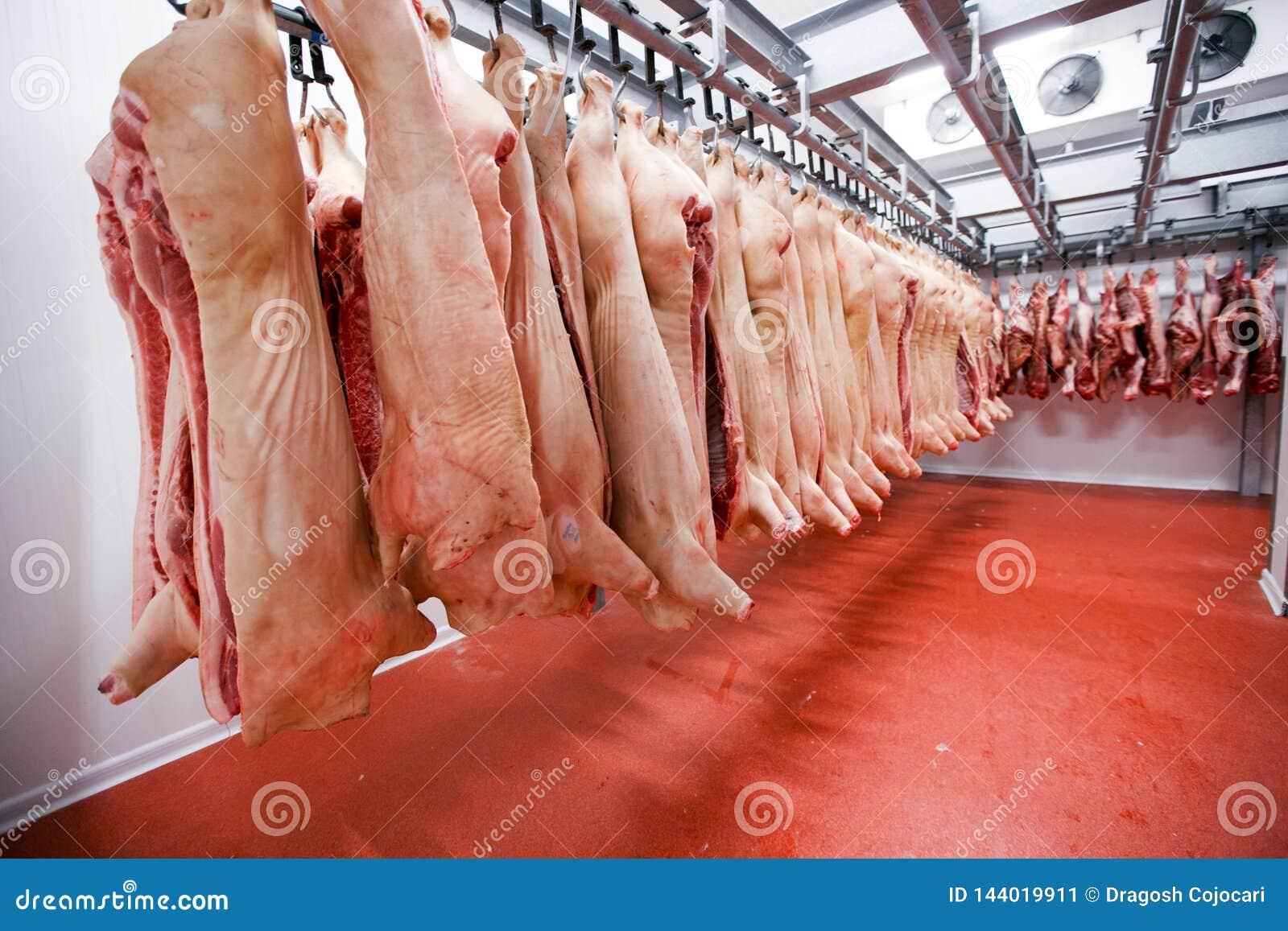Gracioso Cerdo Colgado en la Valla Bienvenido Cubiertas Magn/éticas para Buzones Bienvenido Buz/ón Wraps Post Letter Box Cover Garden Home Decor 21x18 Pulgadas