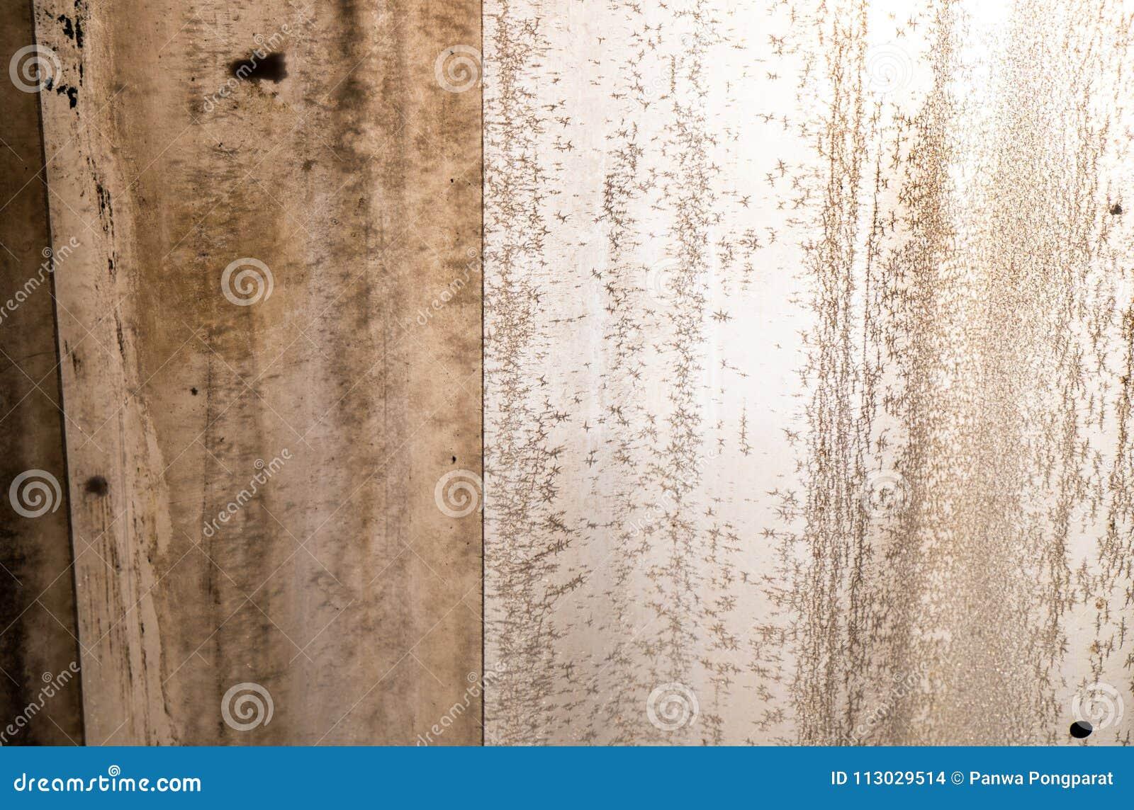 Ciérrese encima de viejo fondo gris del tejado