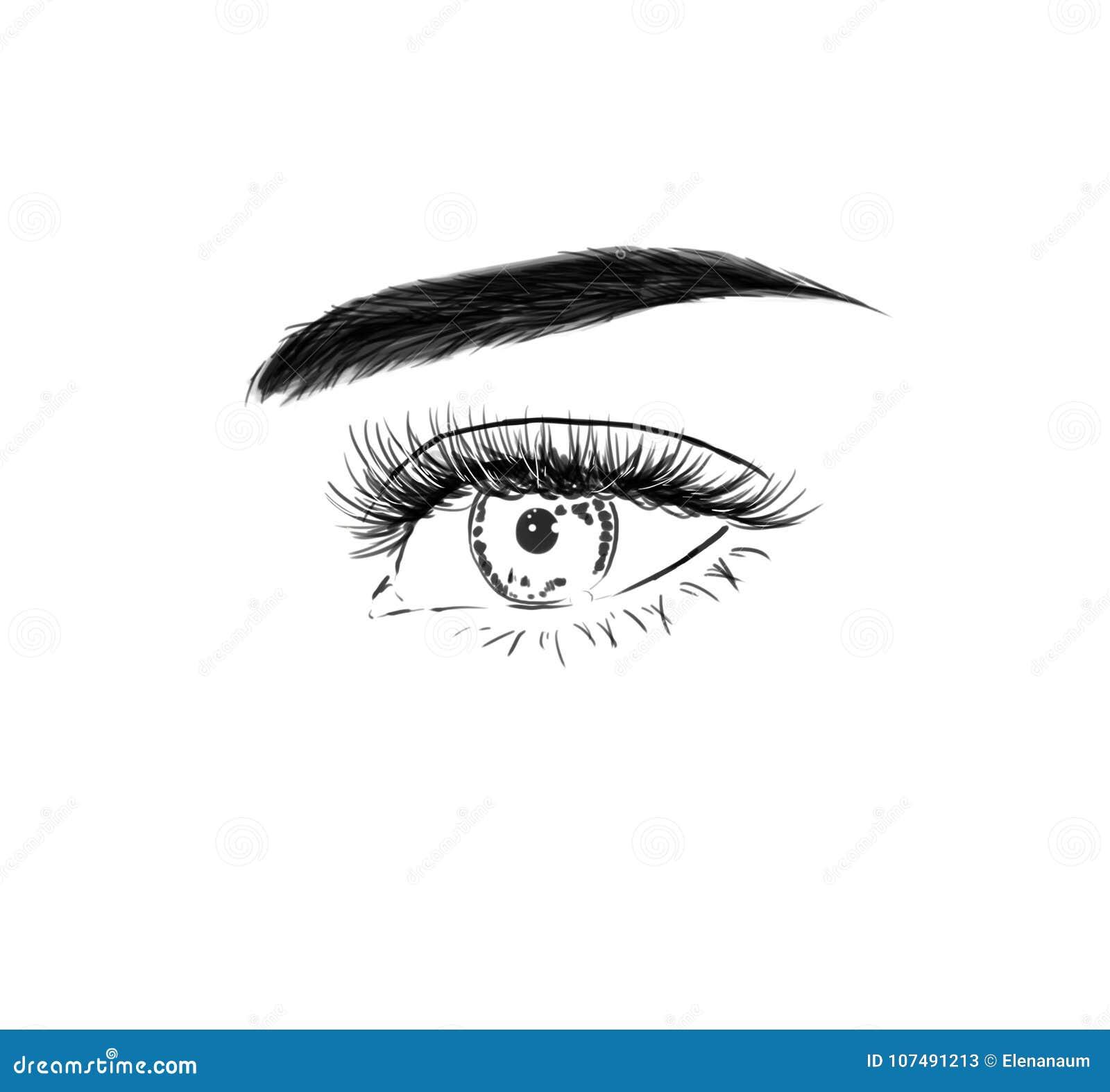 Ciérrese Para Arriba Con El Ojo Hermoso Con Las Pestañas Largas