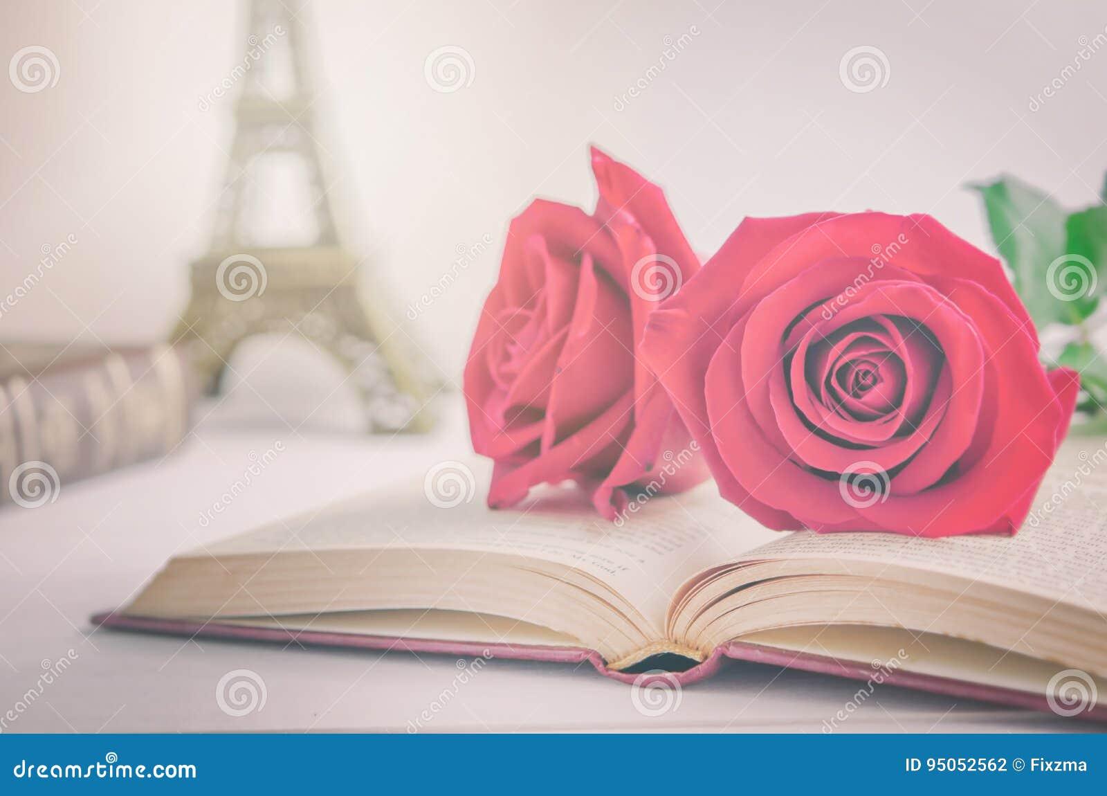 Ci rrese para arriba de las flores de la rosa del rojo en el libro viejo abierto con tonelada del vintage foto de archivo imagen 95052562