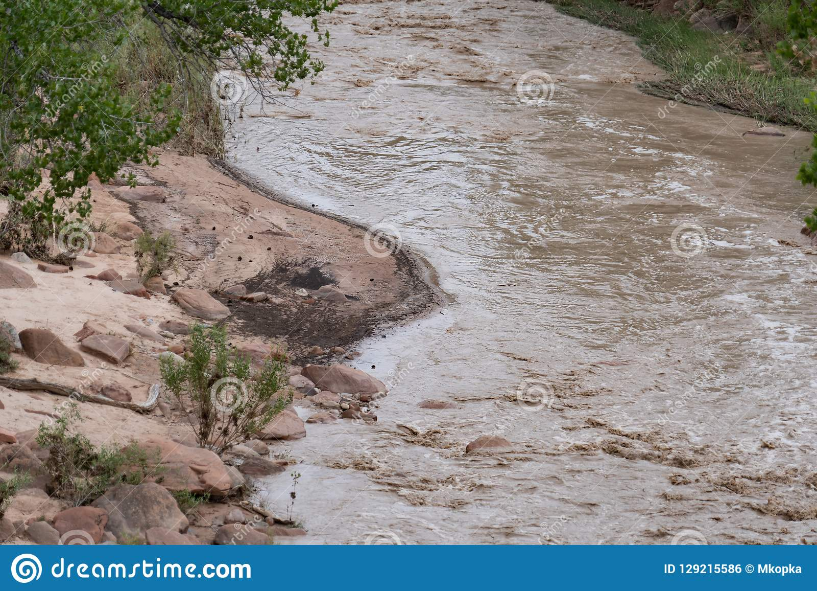 Ciérrese para arriba de los bancos y de las barras de arena del río de la Virgen en Utah