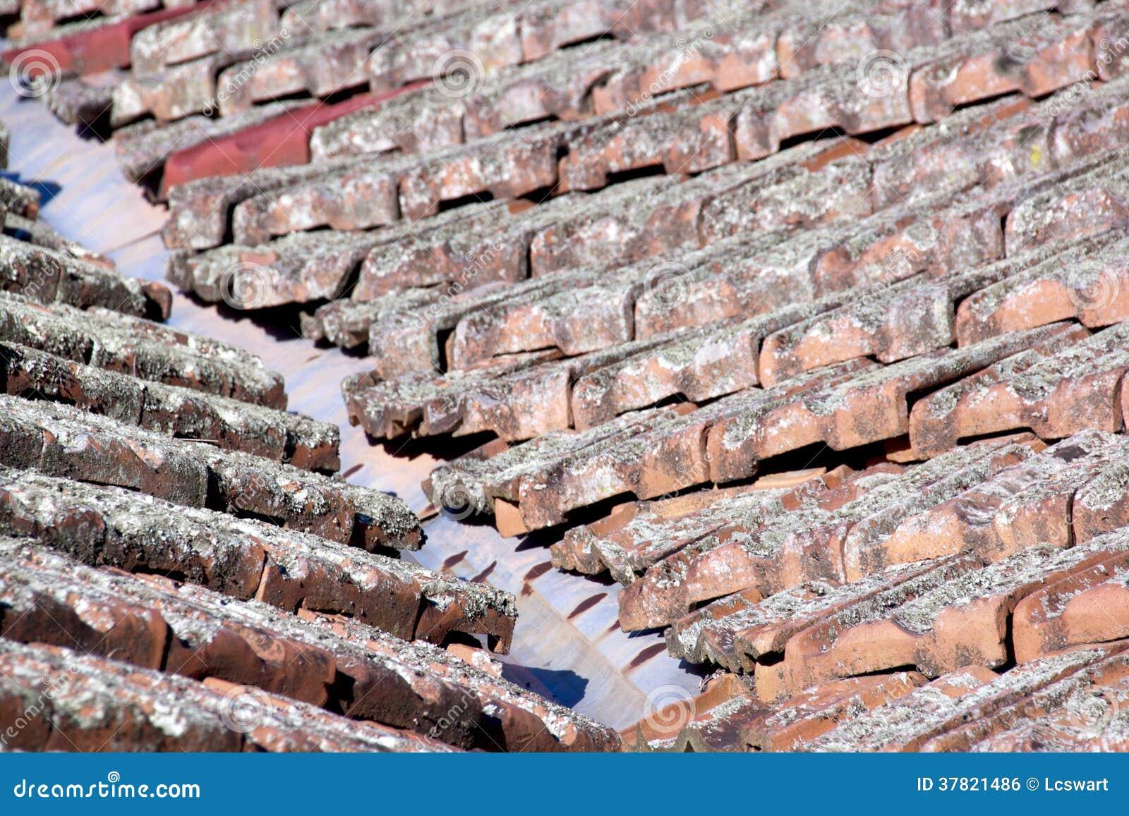 Ciérrese para arriba de tejas cubiertas liquen y de hierro galvanizado del valle