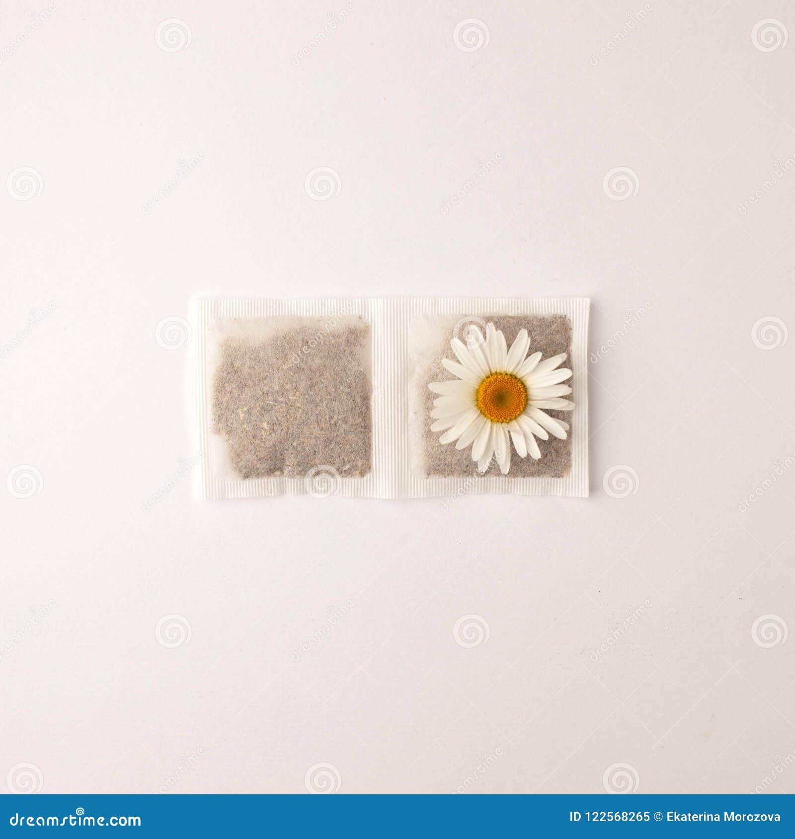 Ciérrese para arriba de tiempo del té Té de manzanilla seco en la bolsita de té, concepto mínimo