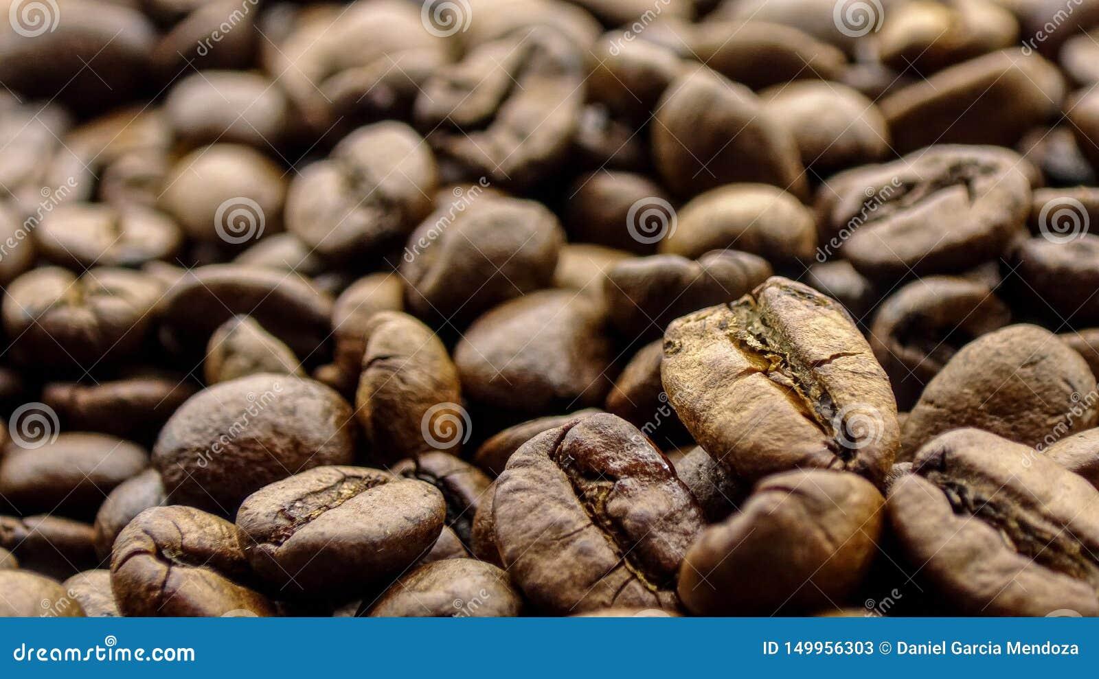 Ciérrese para arriba del café de los granos