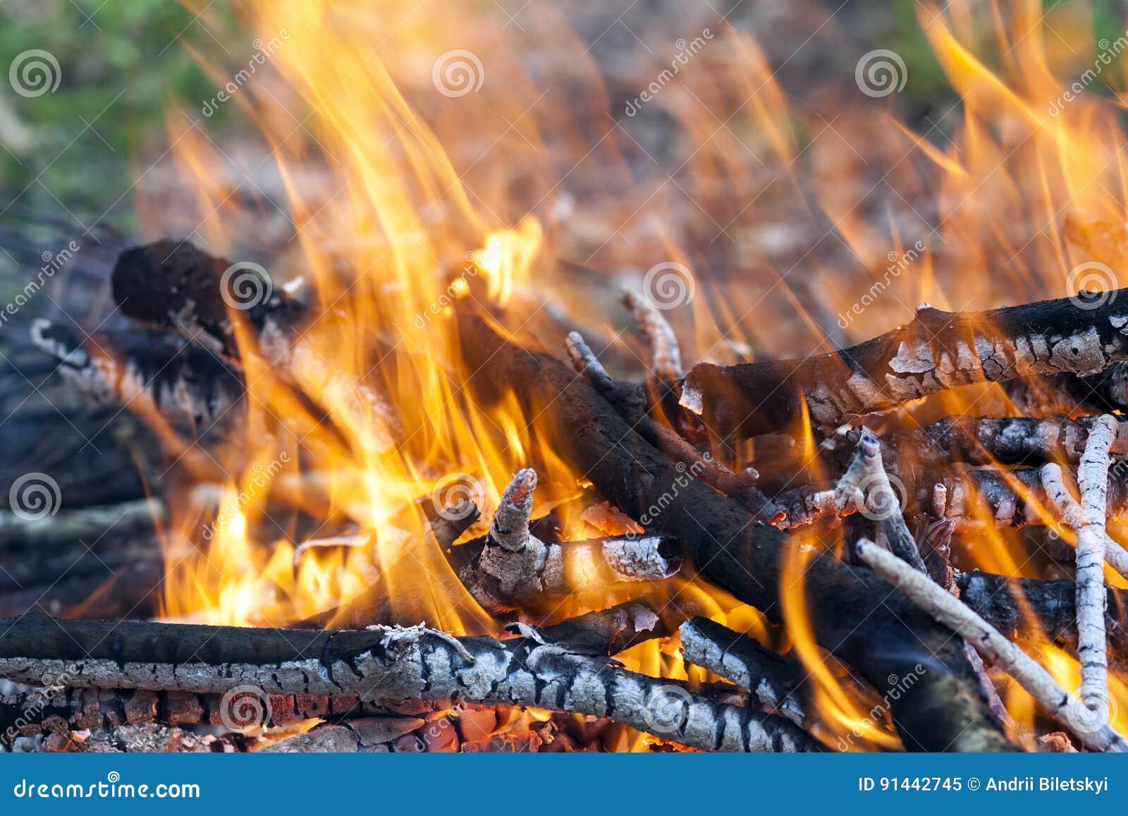 Ciérrese para arriba del carbón de madera del fuego ardiente caliente