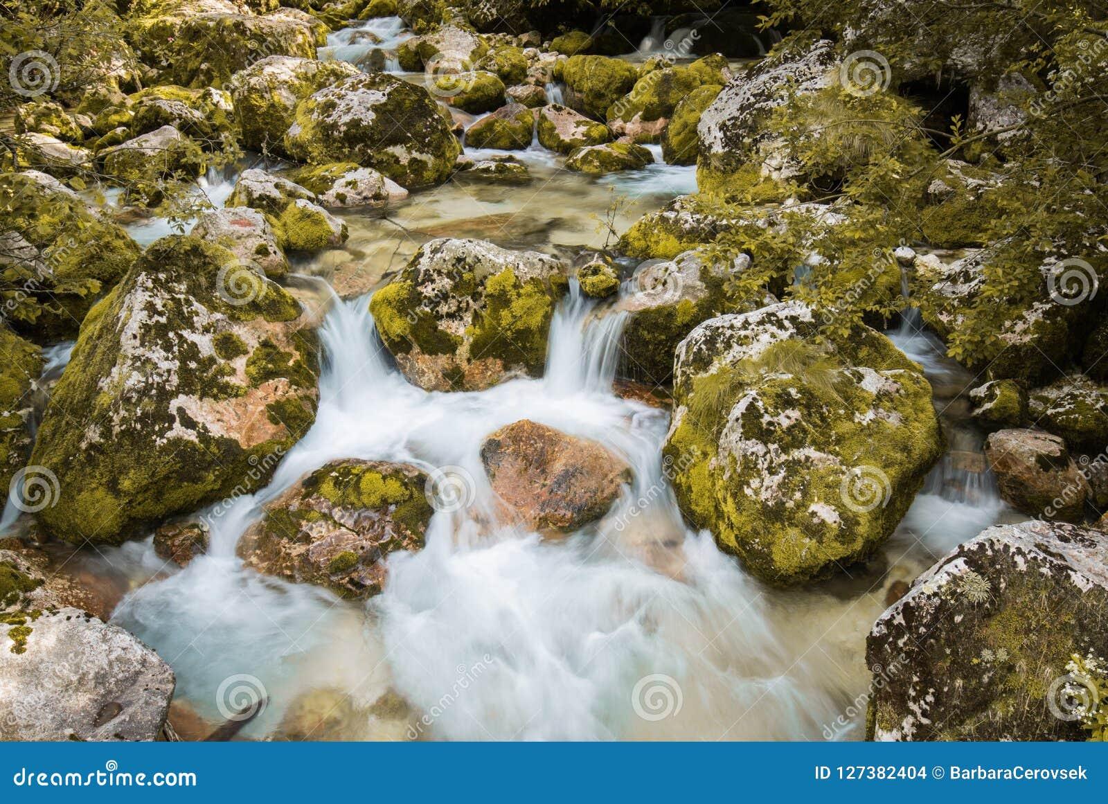 Ciérrese para arriba del río Lepenjica en el corazón del valle de Lepena, Eslovenia