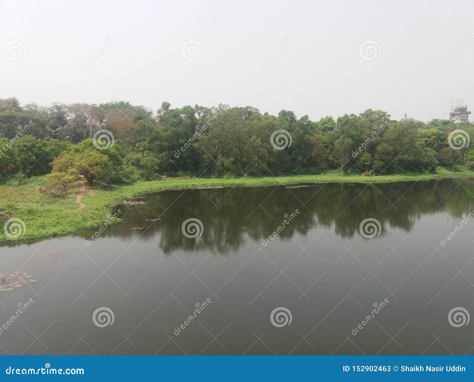 Ciò è un lago nello iin Dacca, Bangladesh del giardino botanico