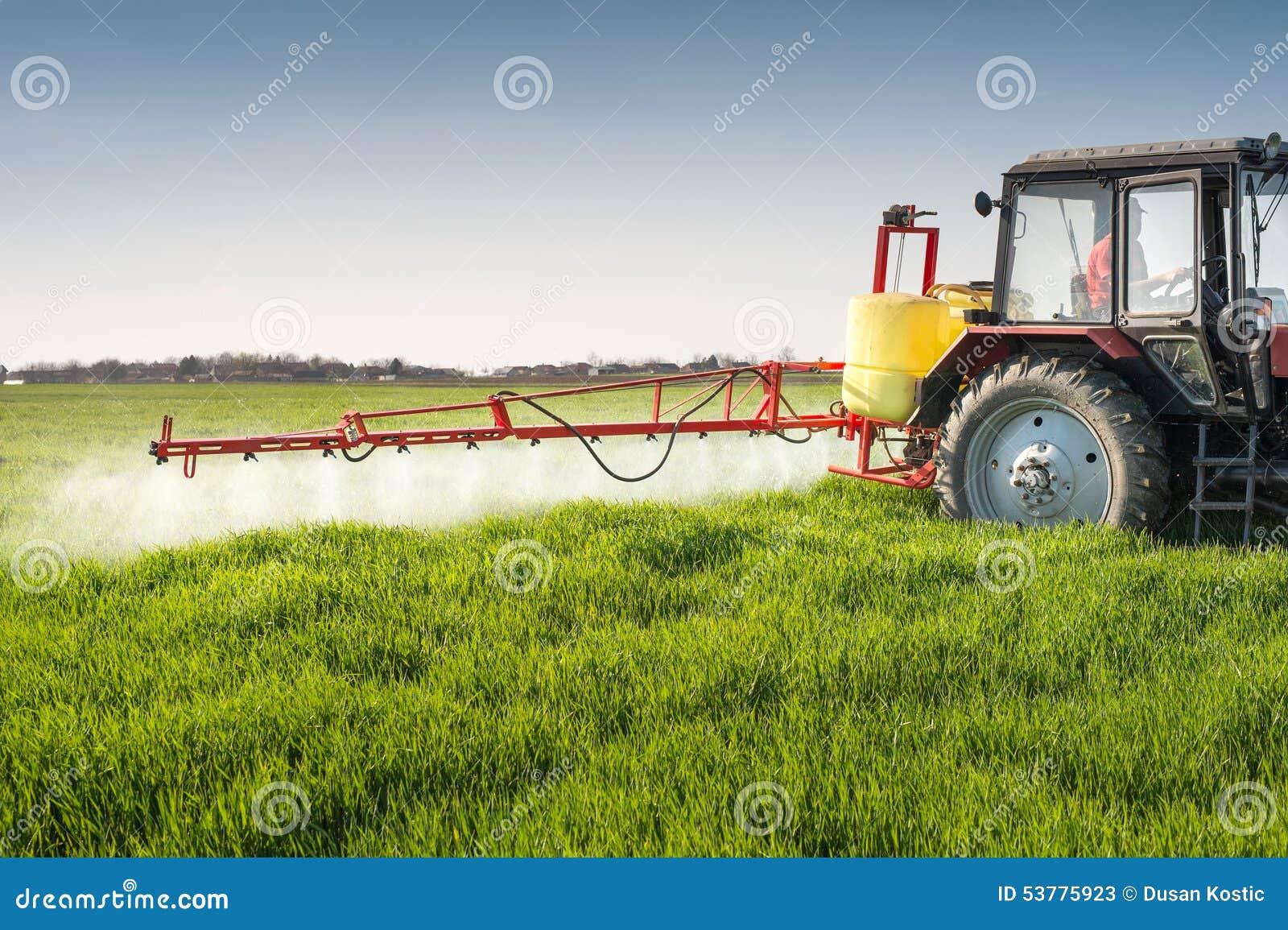 Ciągnikowego opryskiwania pszeniczny pole