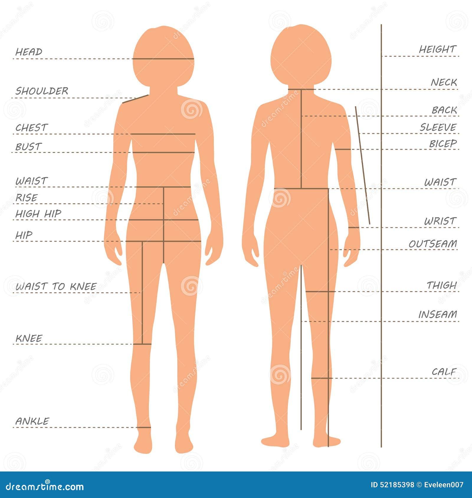 Ciało pomiarów rozmiaru mapa,
