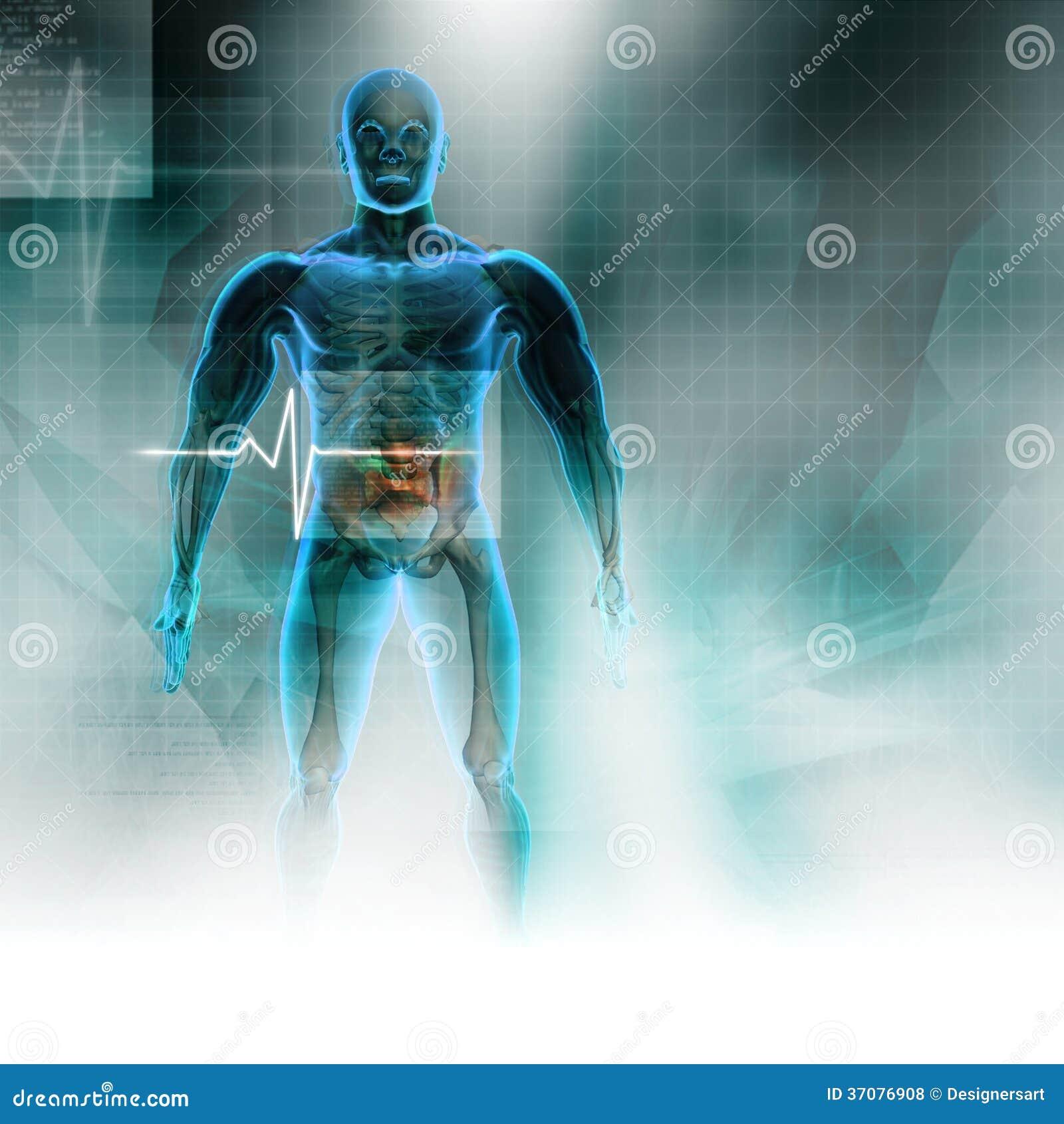 Download Ciało ludzkie ilustracji. Ilustracja złożonej z digitise - 37076908