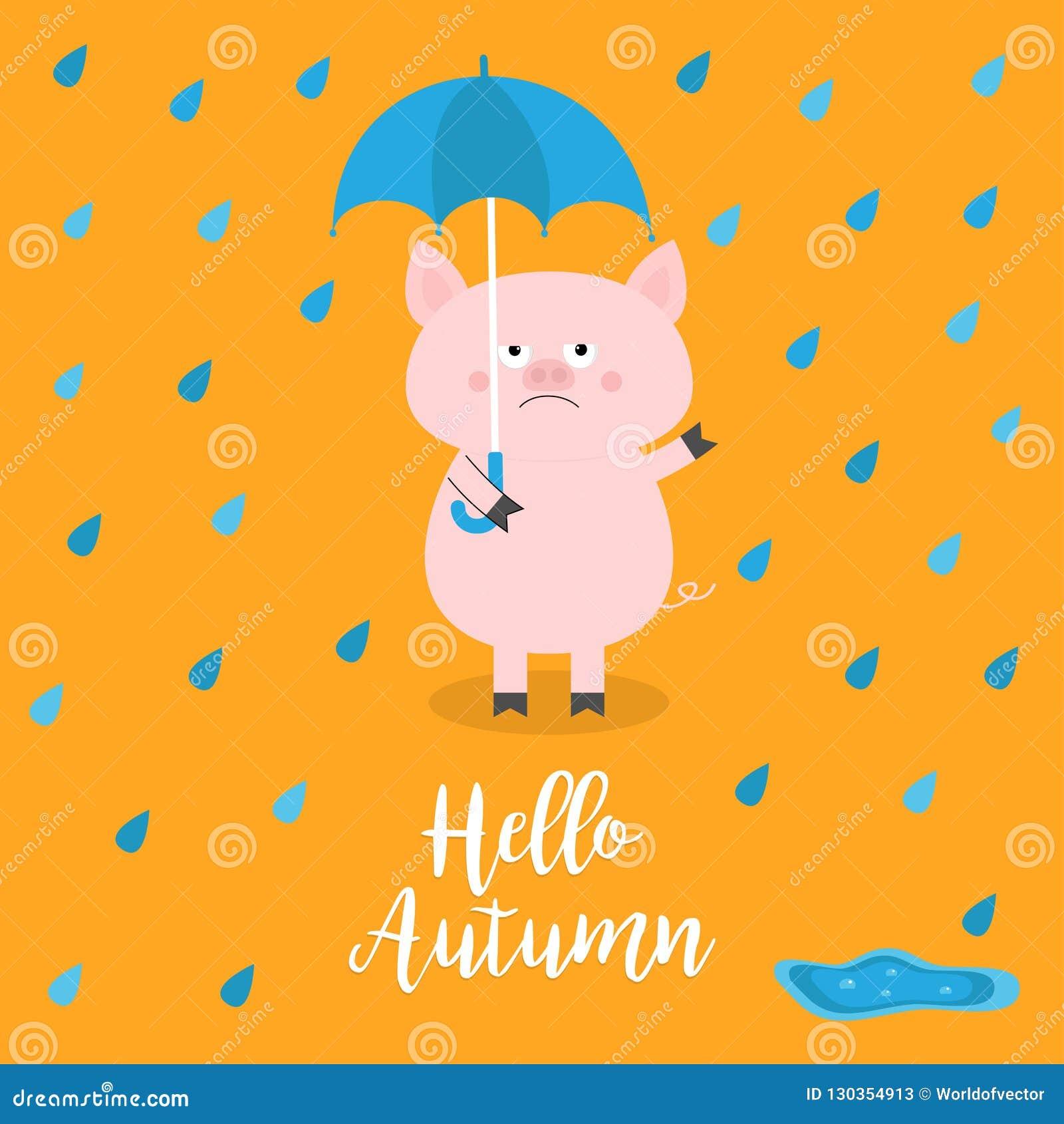 Ciao autunno Maiale che tiene ombrello blu Gocce di pioggia, pozza Emozione triste arrabbiata Caduta di odio Carattere divertente