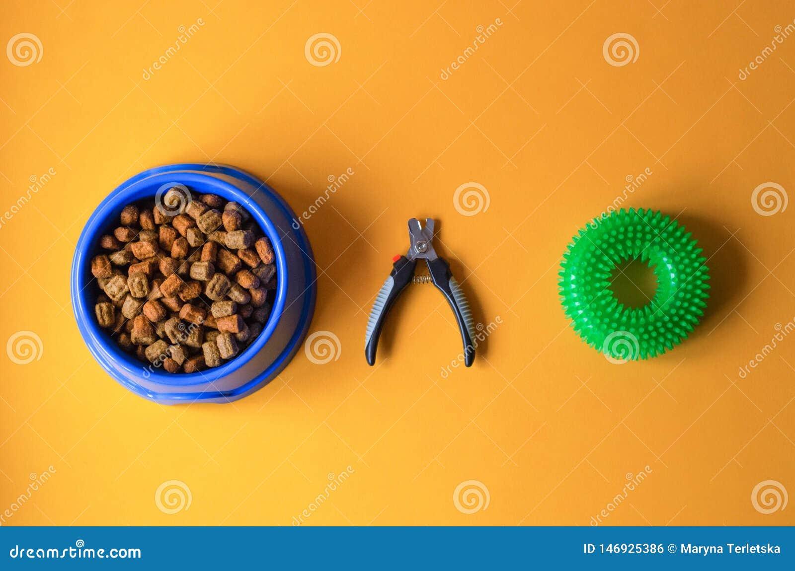 Cibo per cani in un piatto con le forbici dell artiglio e un giocattolo