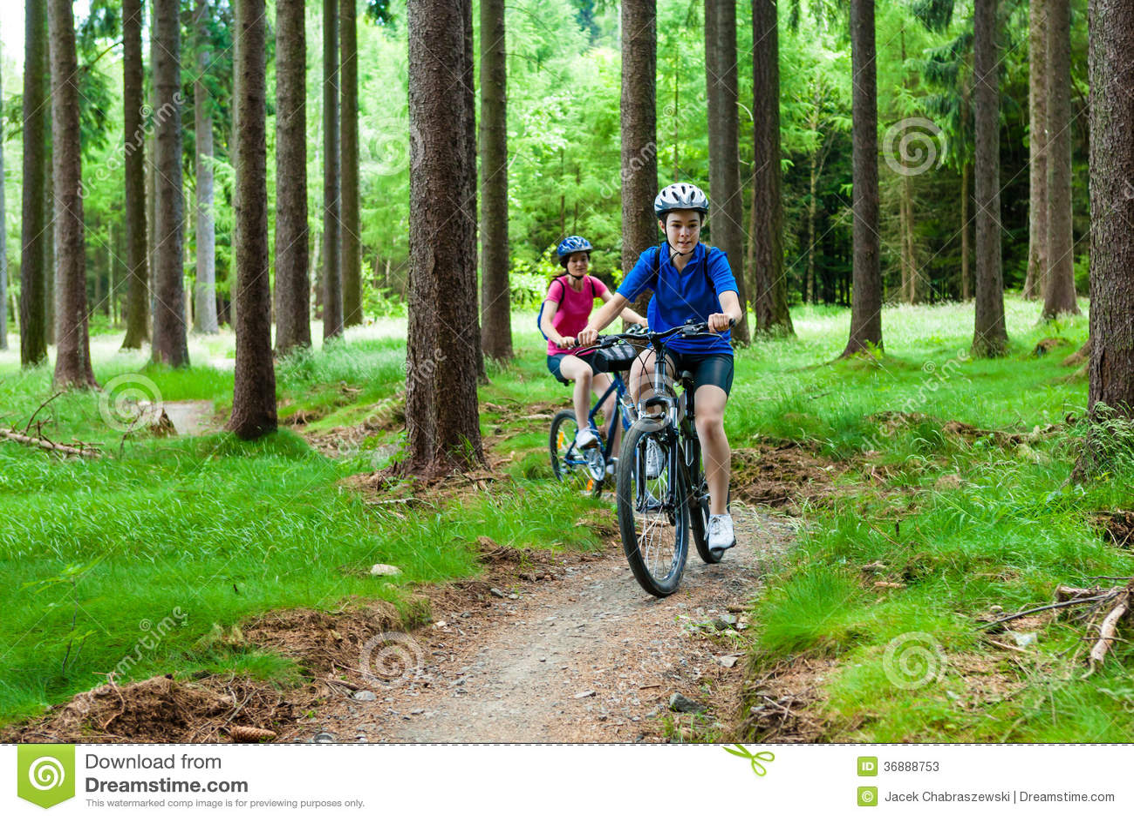 Download Ciclismo Attivo Della Gente Immagine Stock - Immagine di ragazze, gruppo: 36888753