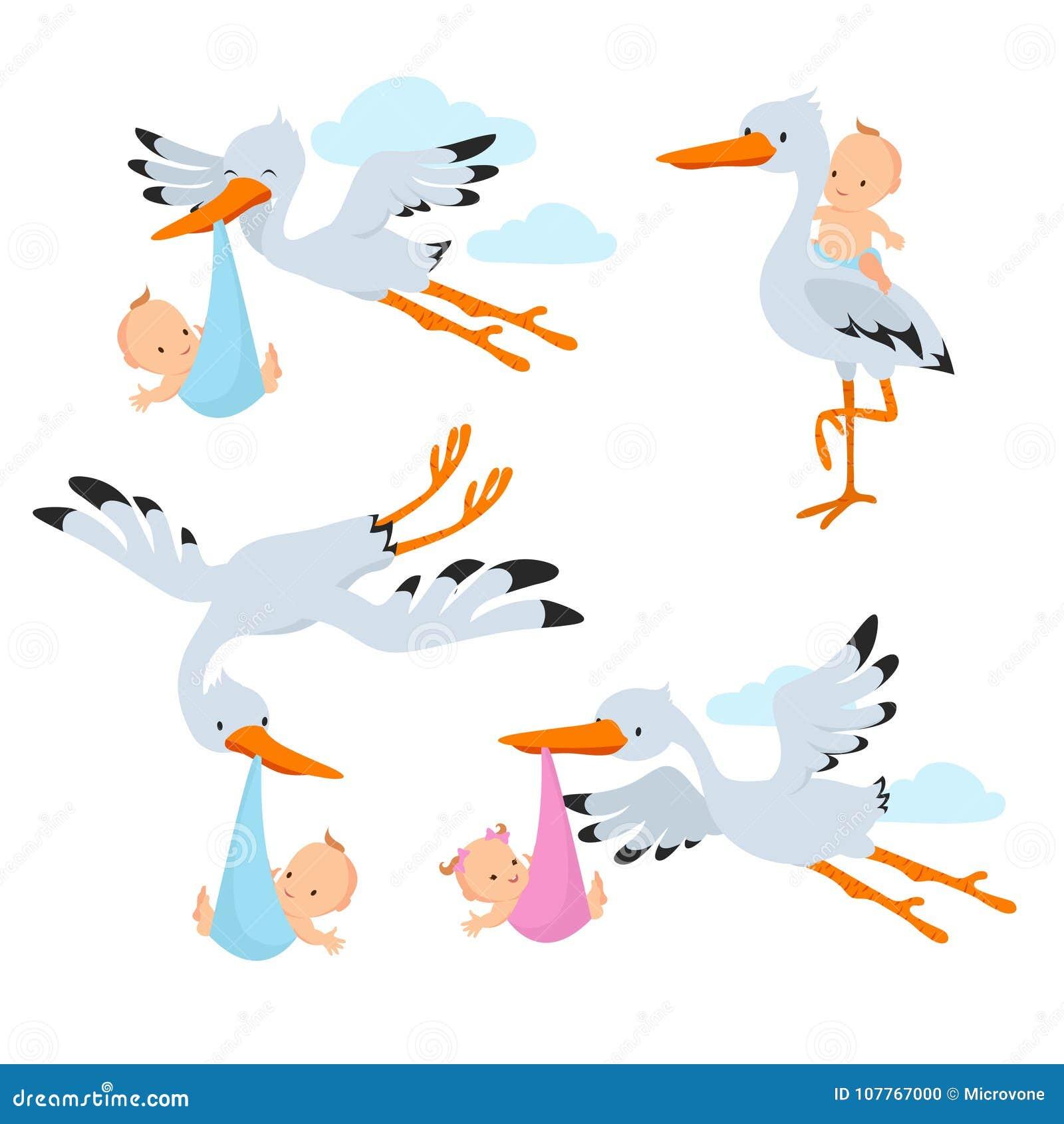 Cicogne di volo del fumetto ed uccelli della cicogna che - Immagini di cicogne che portano bambini ...