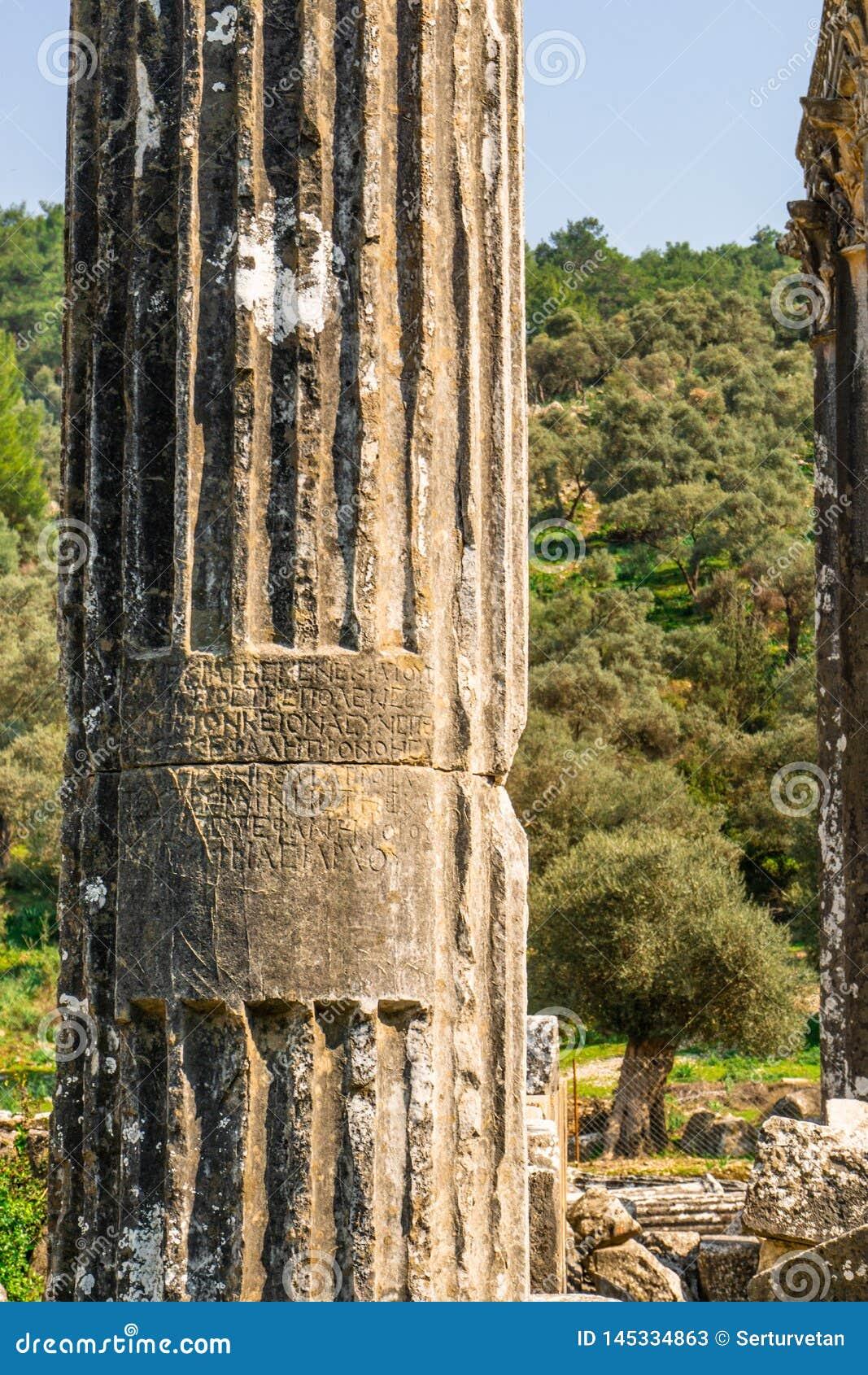 Cidade antiga de Euromus ou de Euromos Templo de Zeus Lepsinos Milas, Mugla, Turquia Kyromos, Hyromos Tradu??o de: dedicado