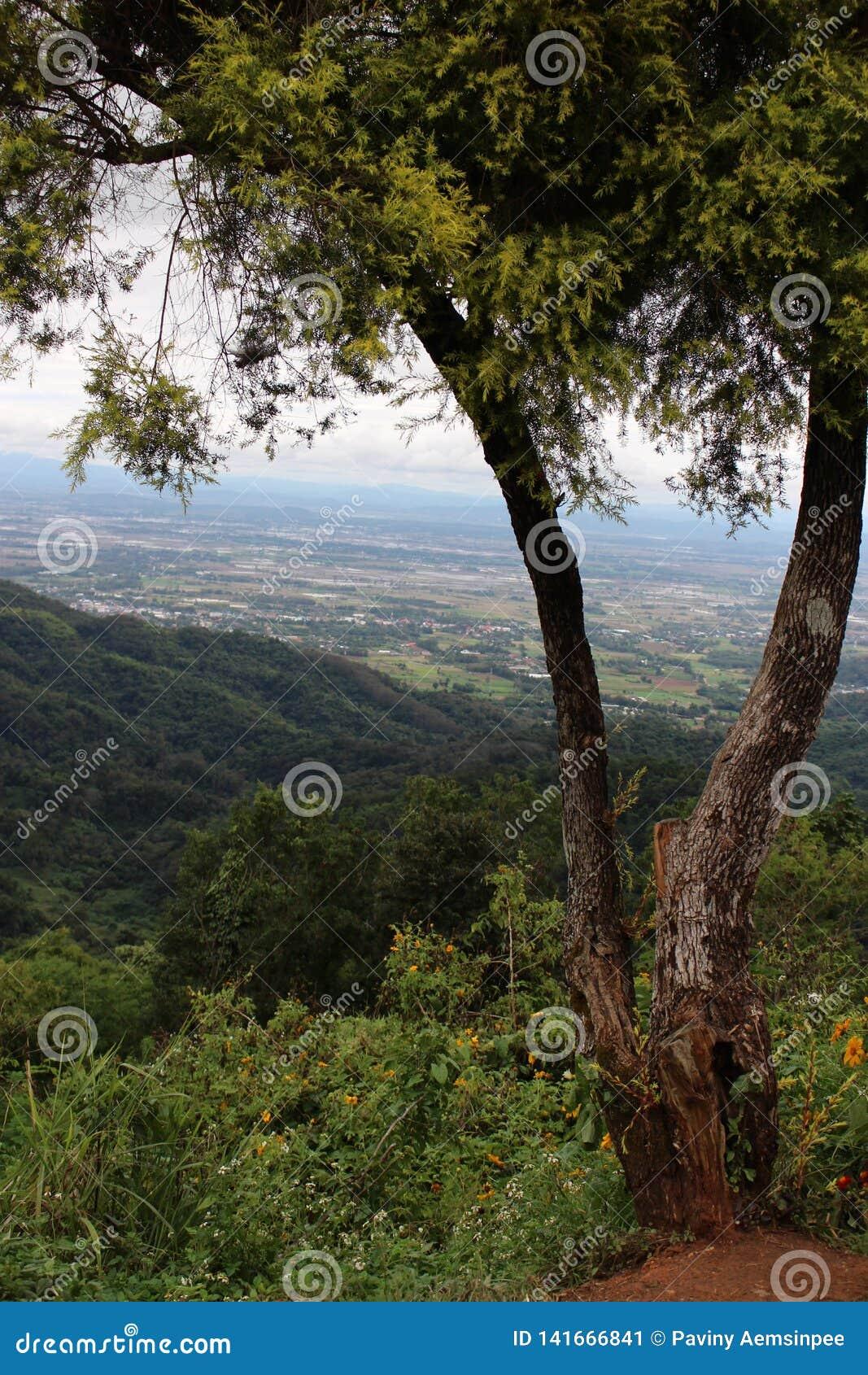 Cidade em montanhoso, cidade em Tailândia, DoiSuthep, Chiengmai