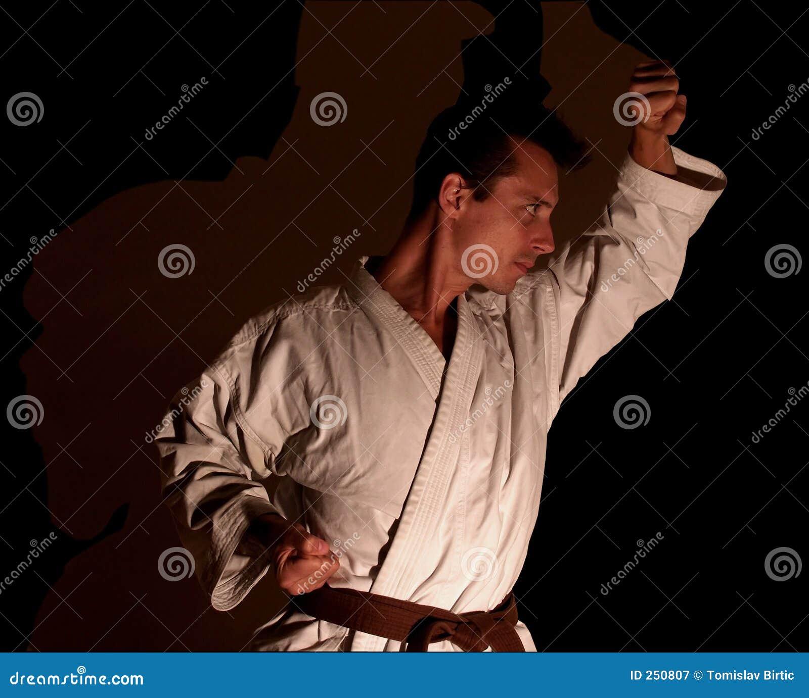 Cień partnera karate.